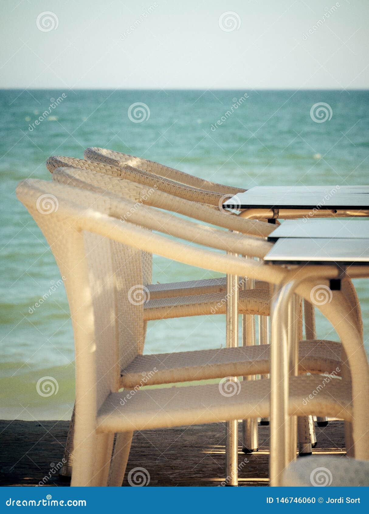 在海滩酒吧的白色椅子