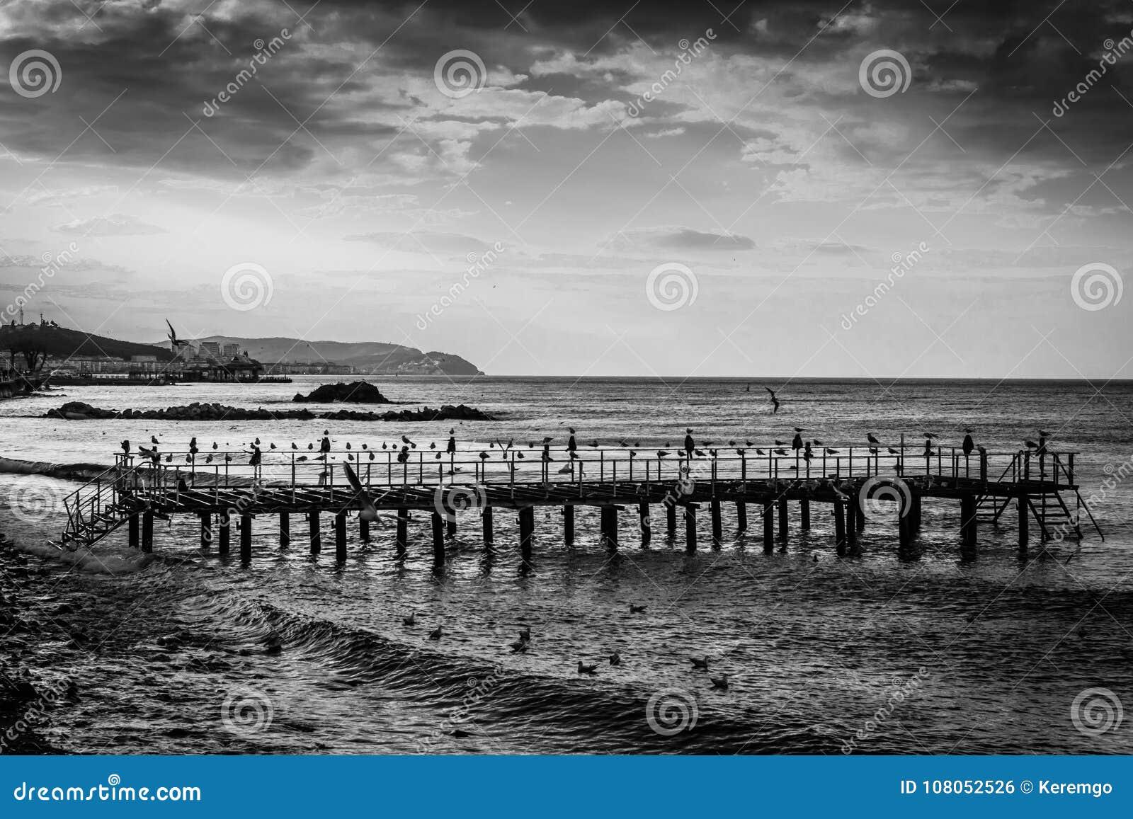 在海边的使荒凉的钢建筑码头