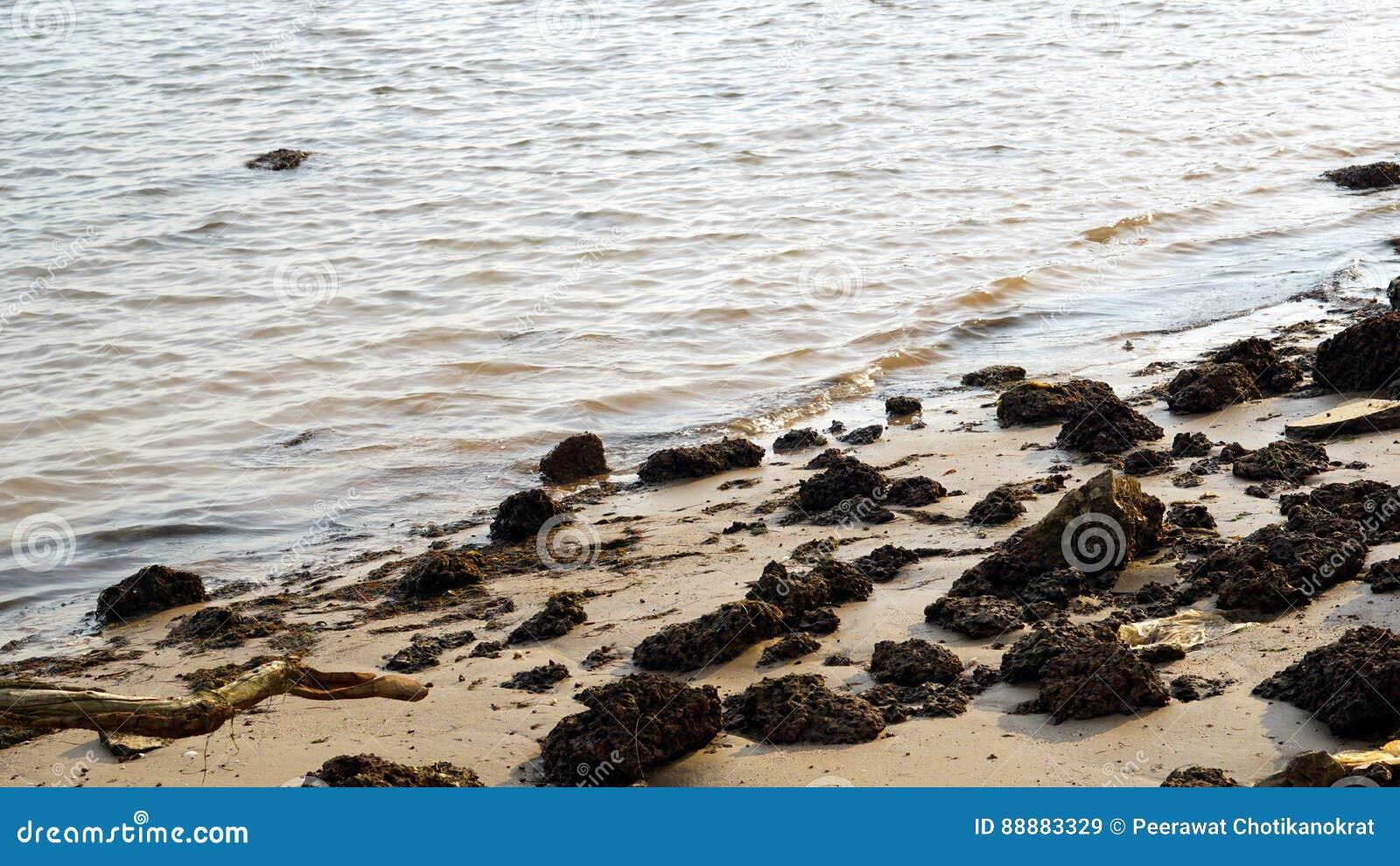 在海滩的夏天