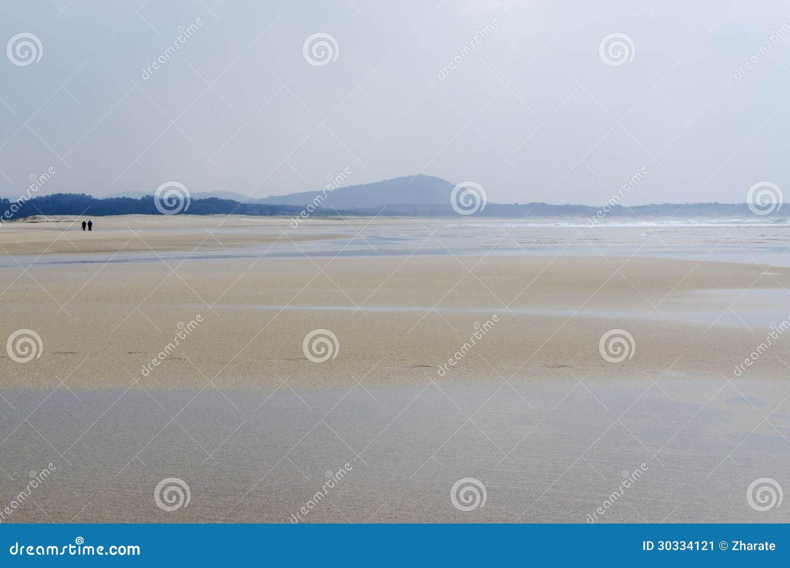在海滩的步行