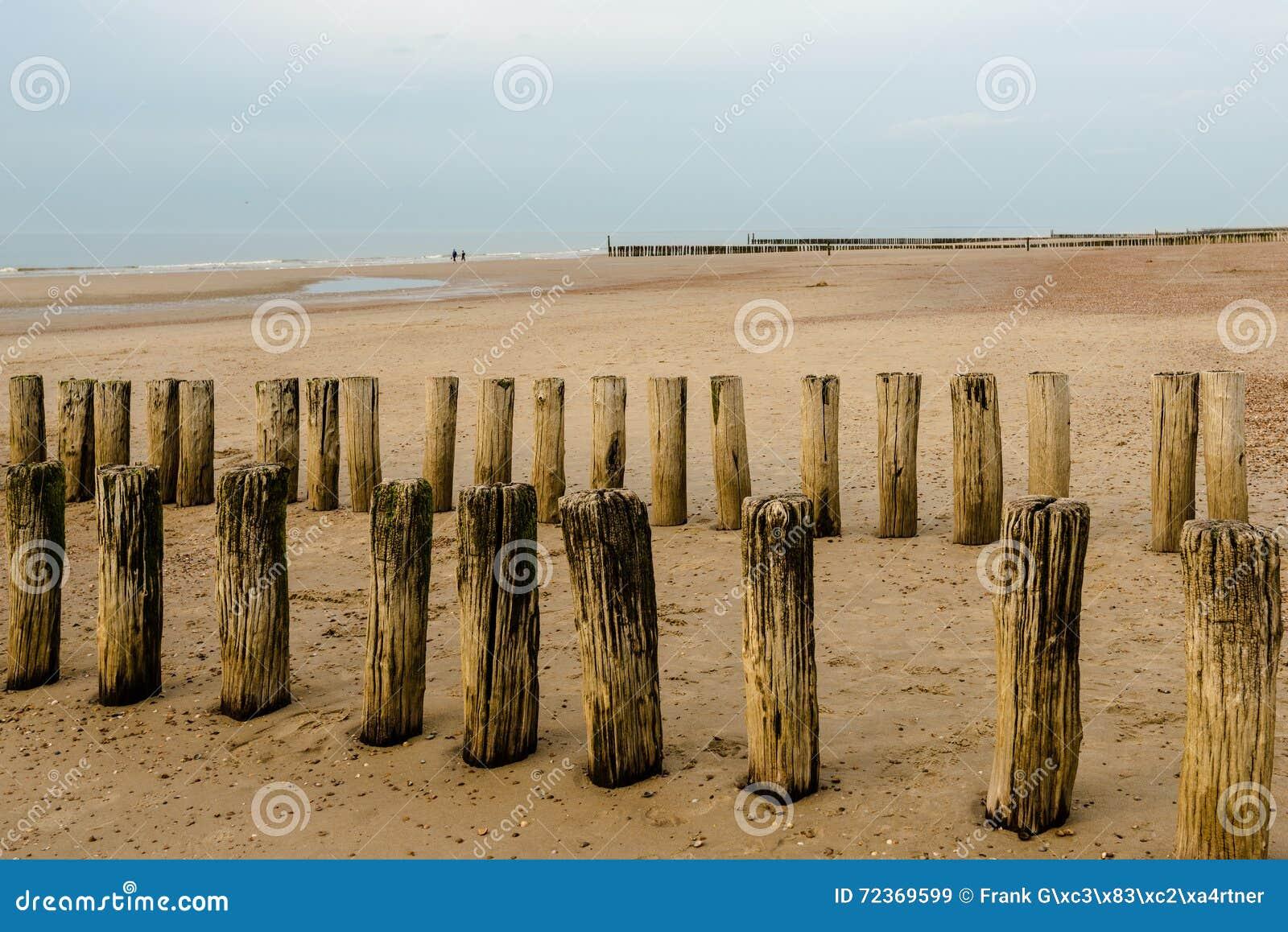 在海滩的防堤在日落