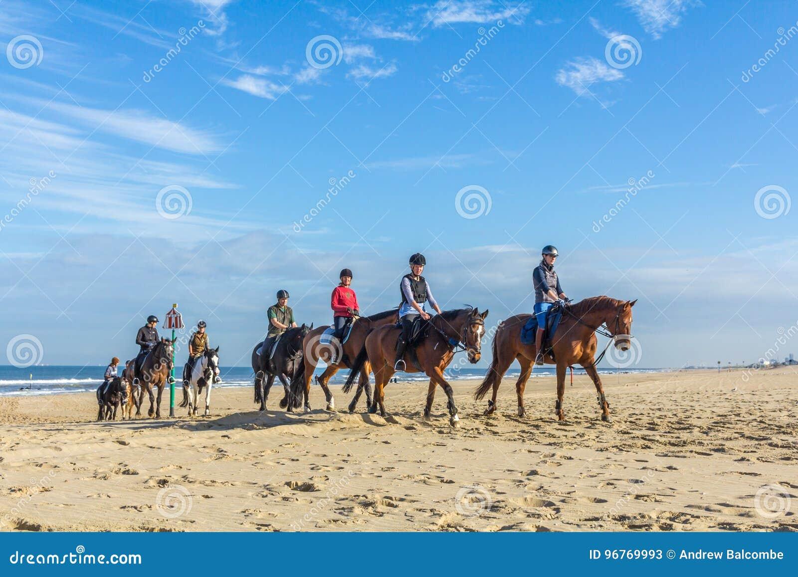 在海滩的马车手在美好的晴天