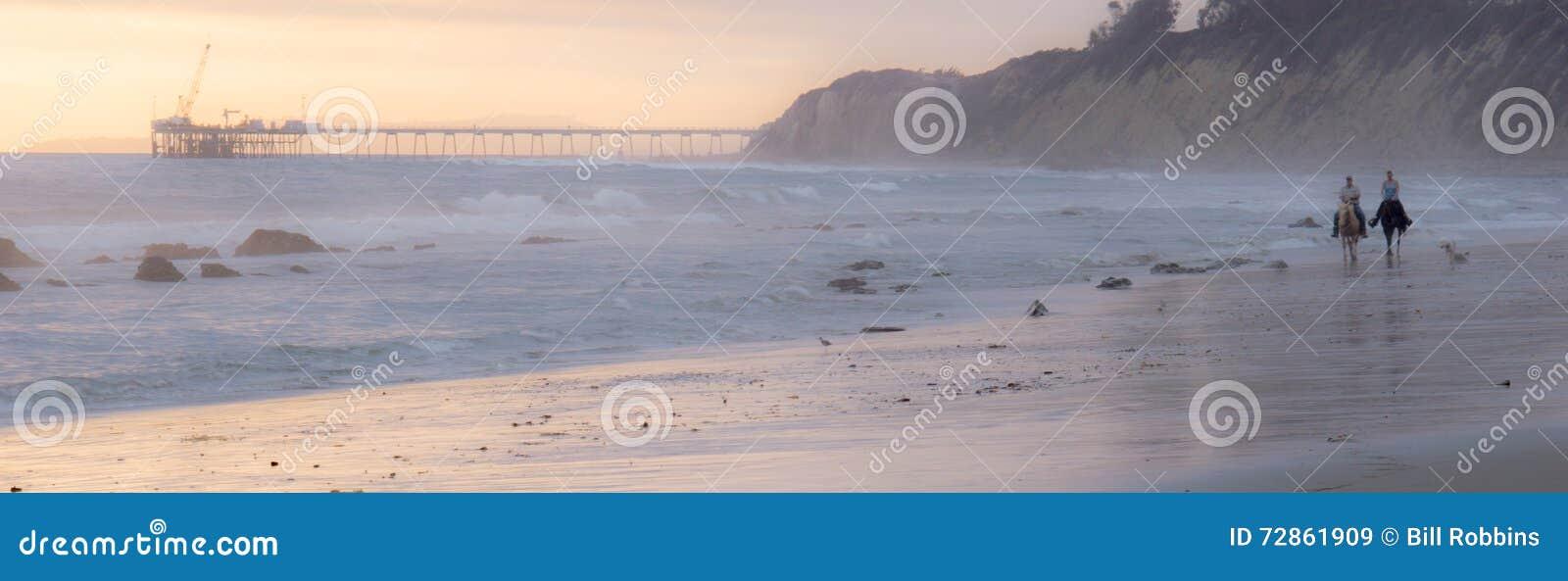 在海滩的马车手
