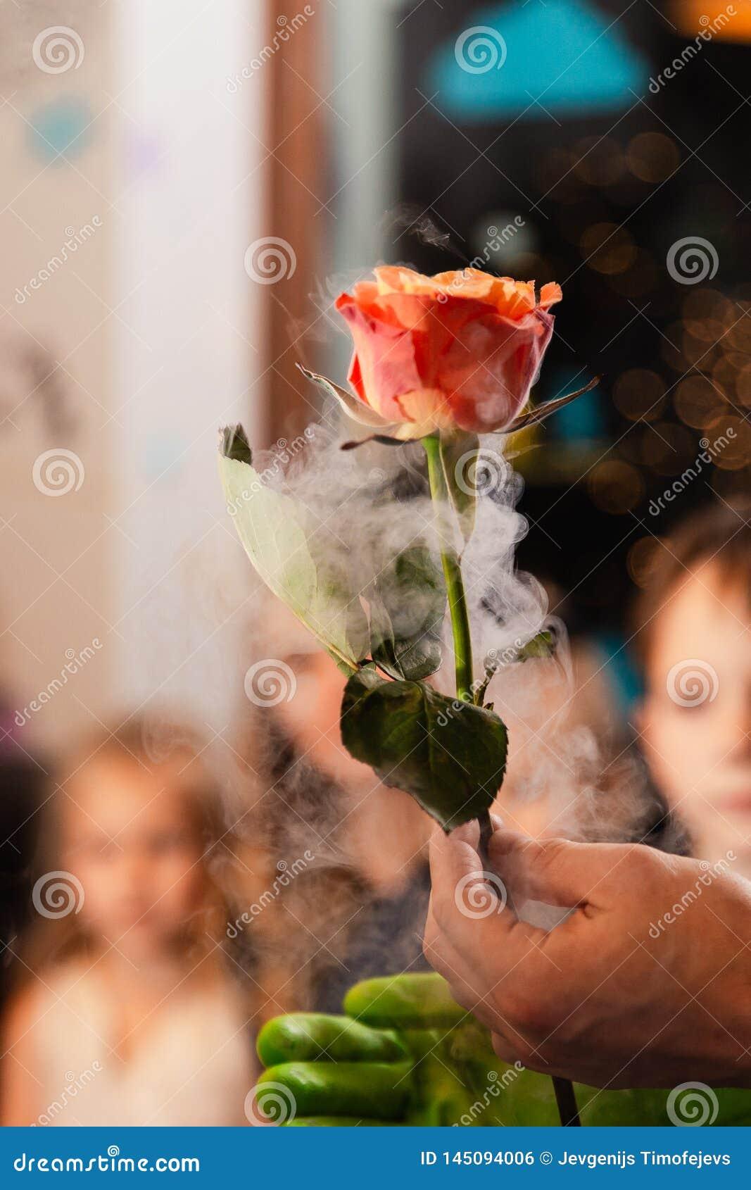 在液氮-儿童生日孩子的装饰党的冻玫瑰