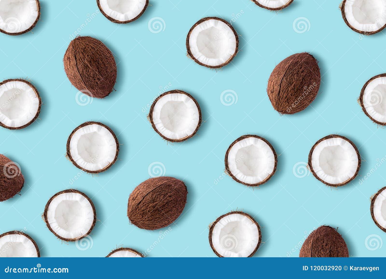 在淡色蓝色背景的椰子果子 最小的夏天conce