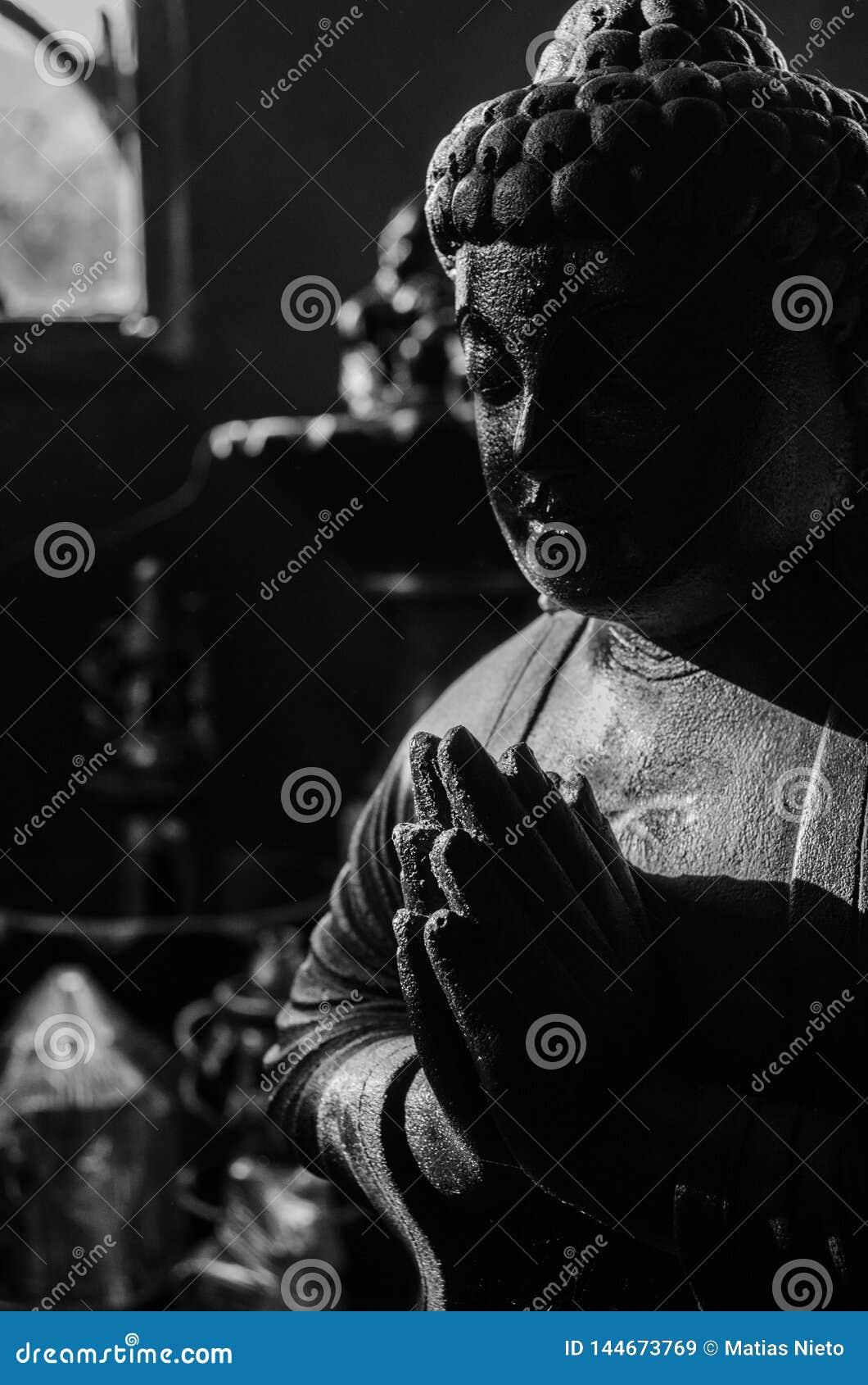 在深深远程位置的佛教雕象在阿根廷