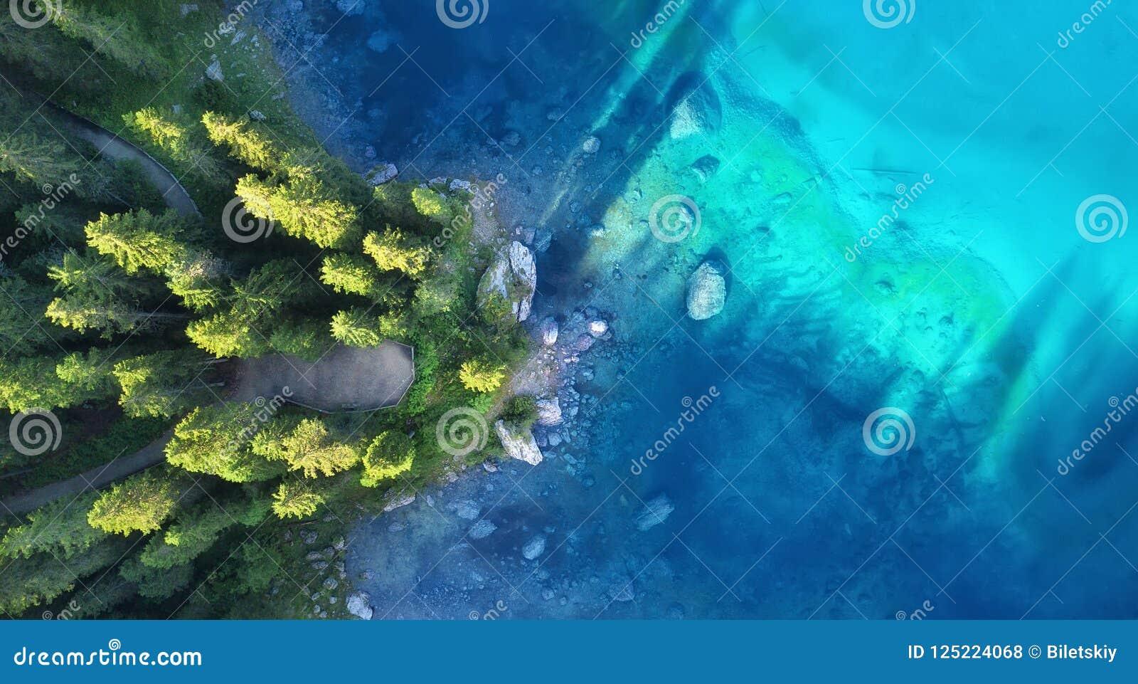 在湖和森林自然风景的鸟瞰图从寄生虫