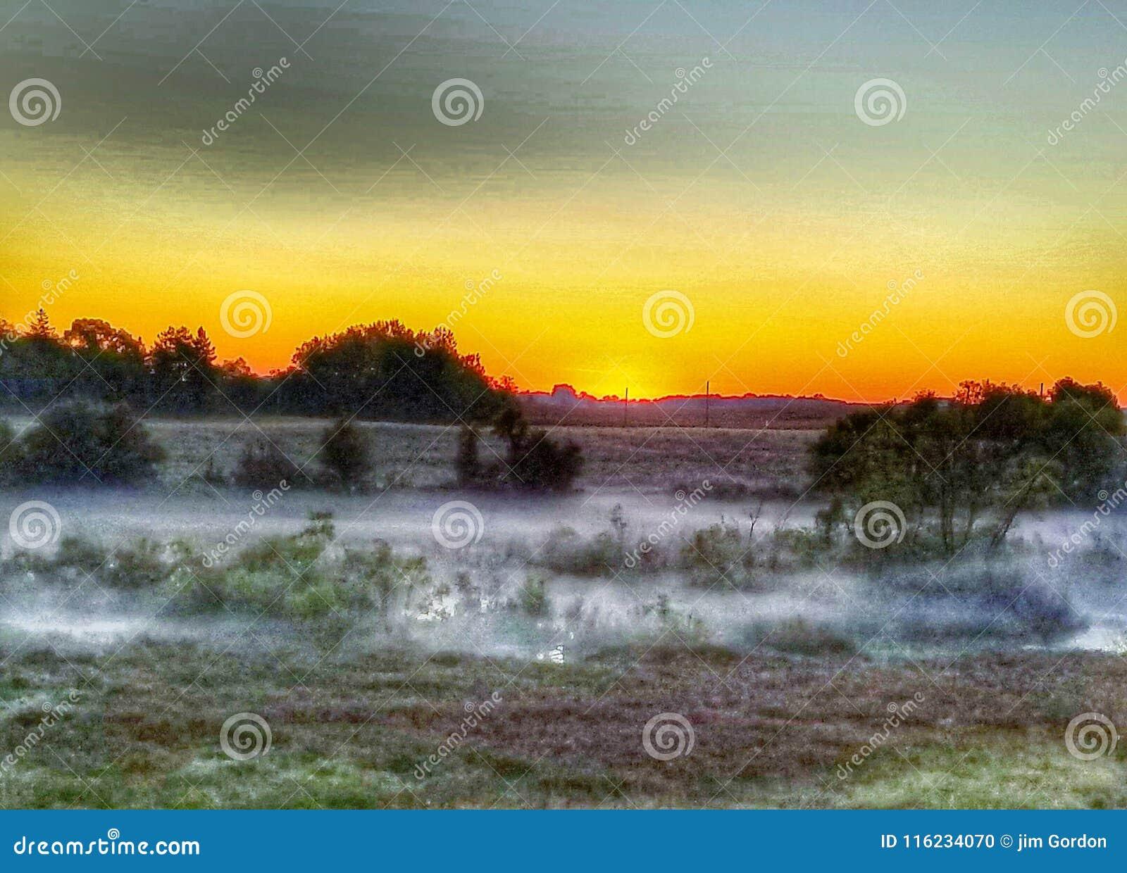 在湖的日出雾
