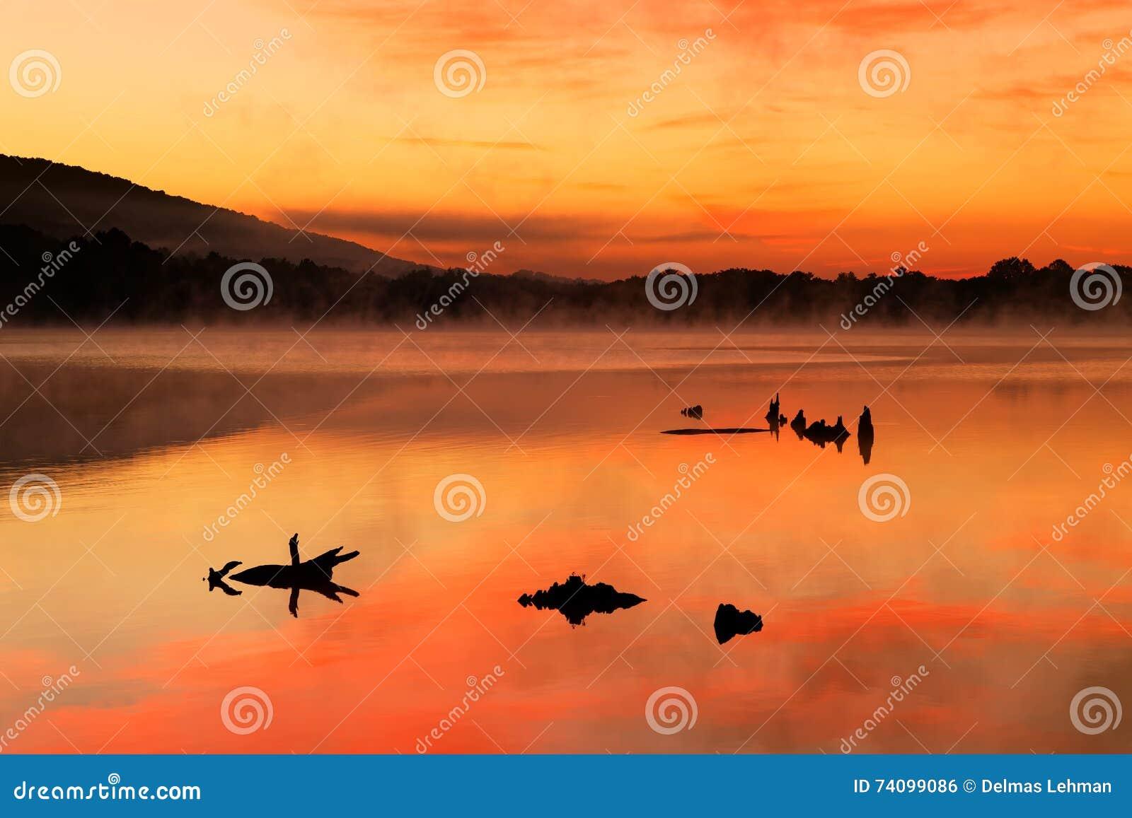 在湖的有薄雾的日出