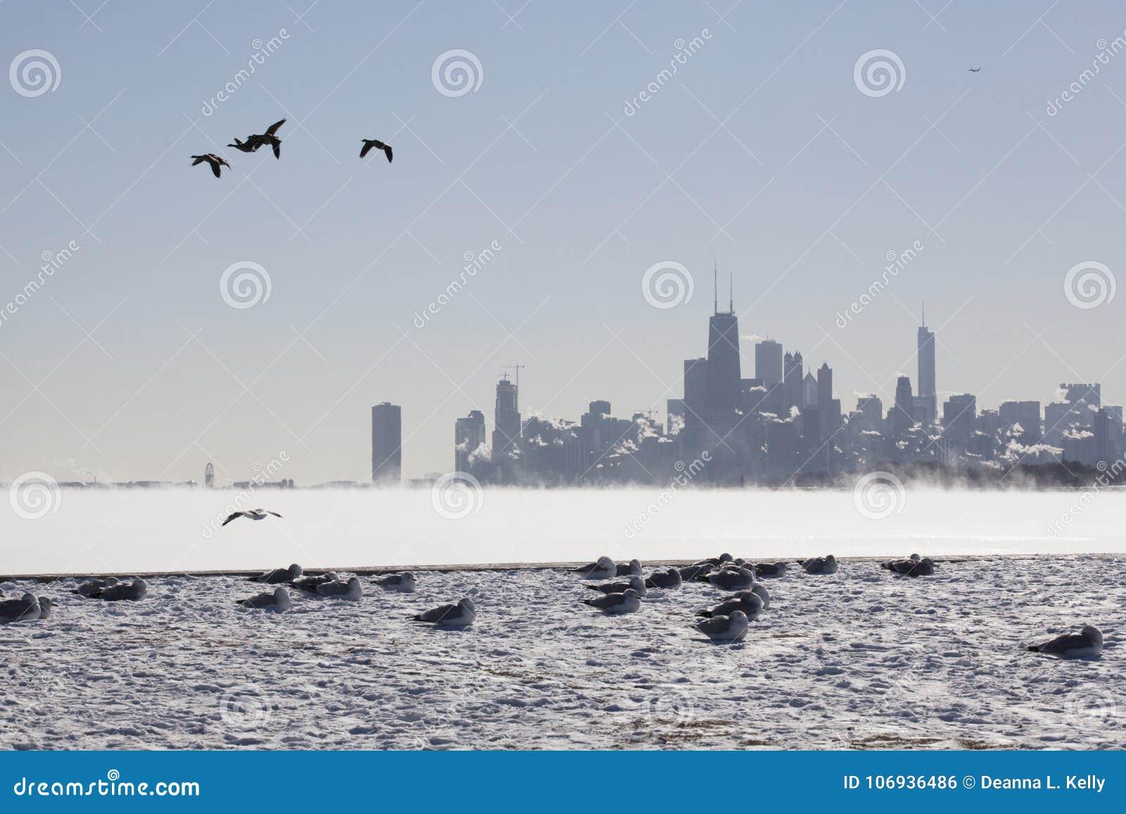 在湖边平地的芝加哥地平线在一个零度以下的冬日