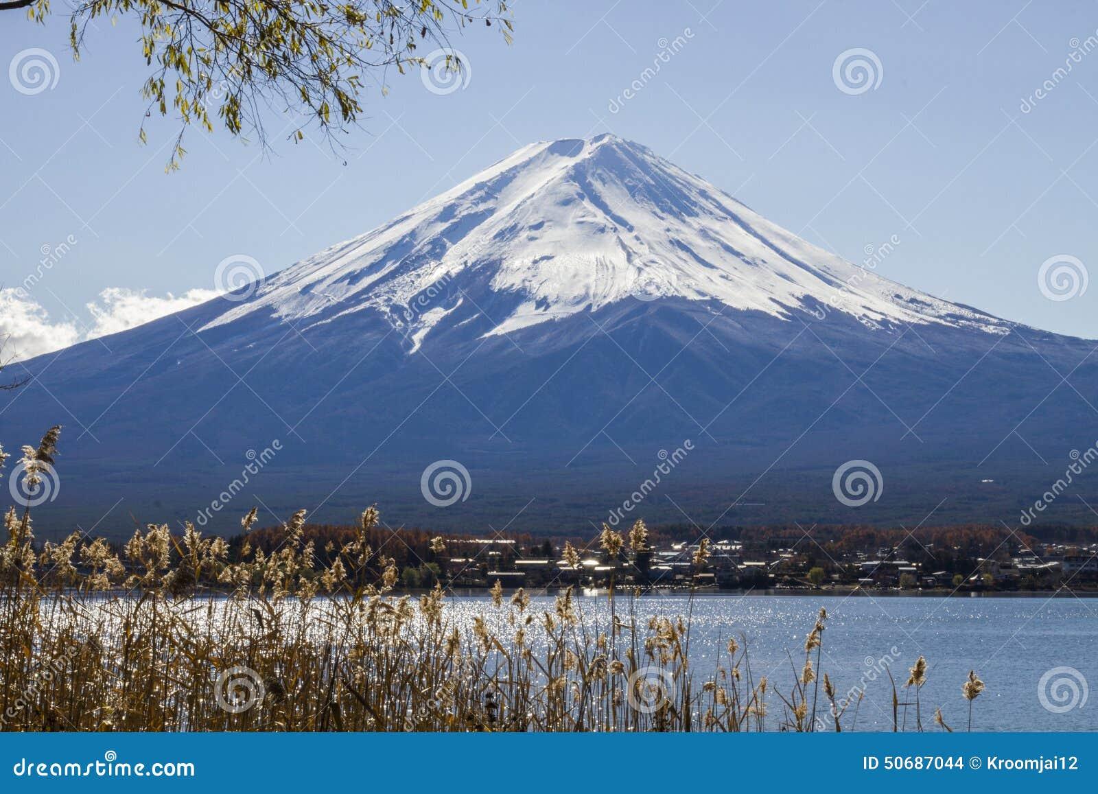 在湖Kawaguchiko的Mt富士在日本