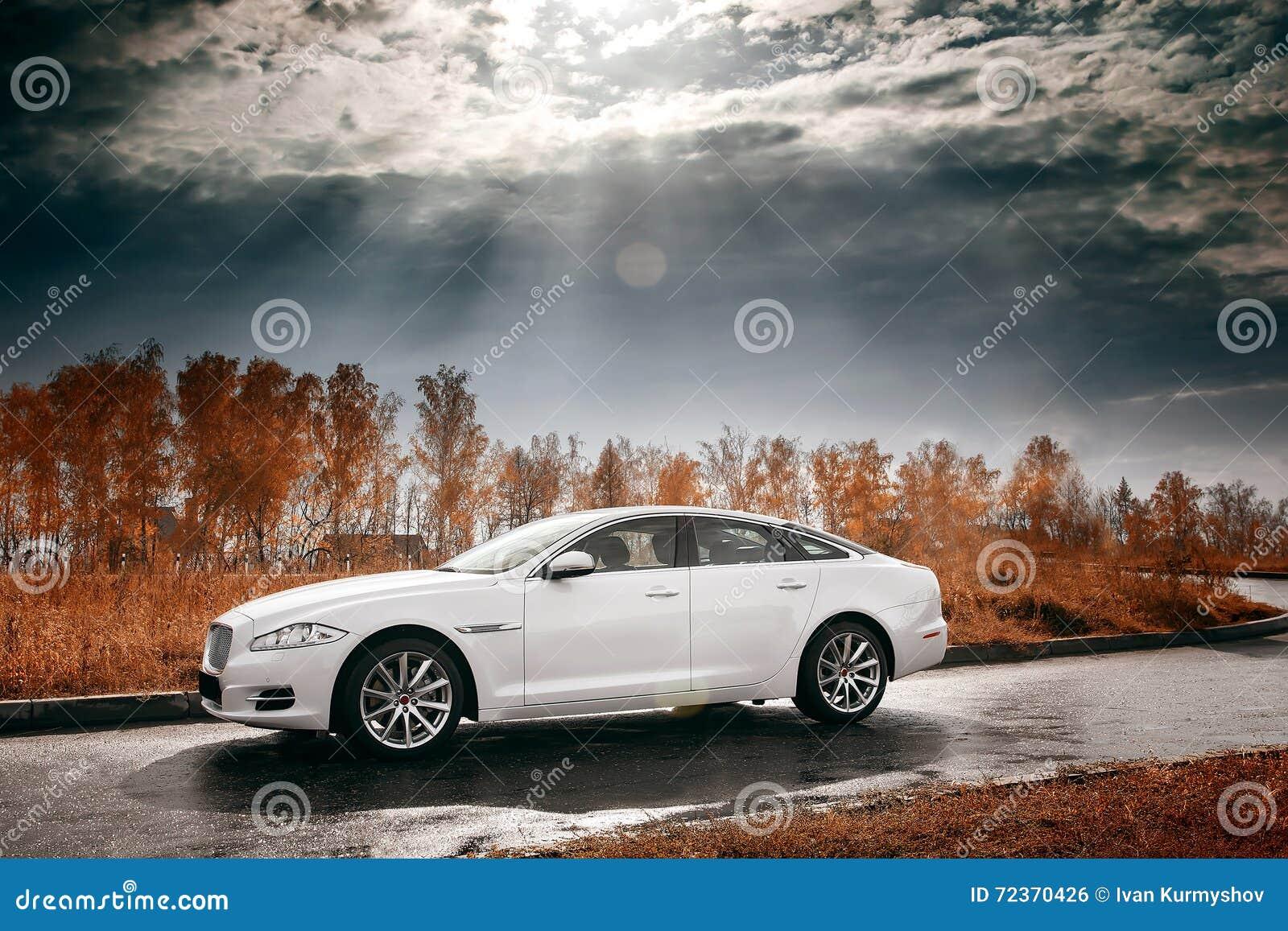 在湿柏油路的白色汽车逗留
