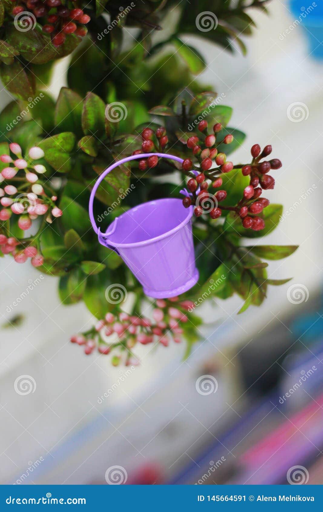 在灌木背景的庭院微型紫色桶
