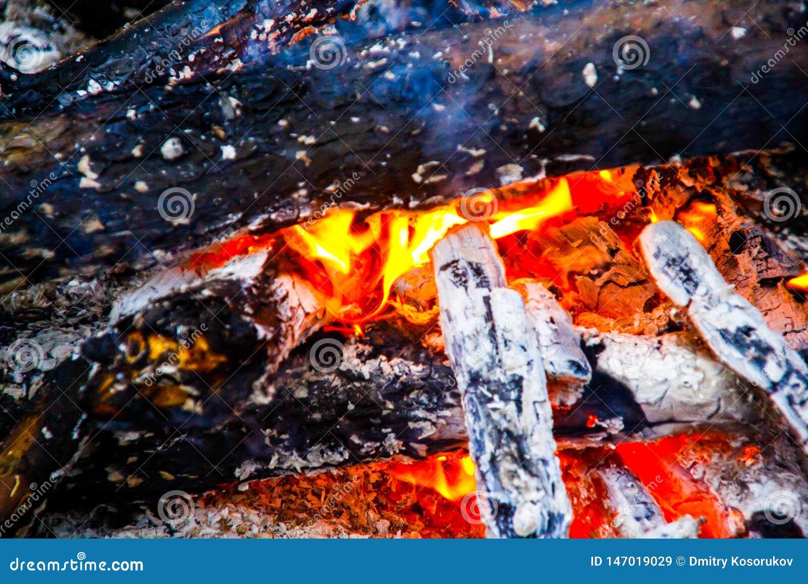 在火的燃烧的木头