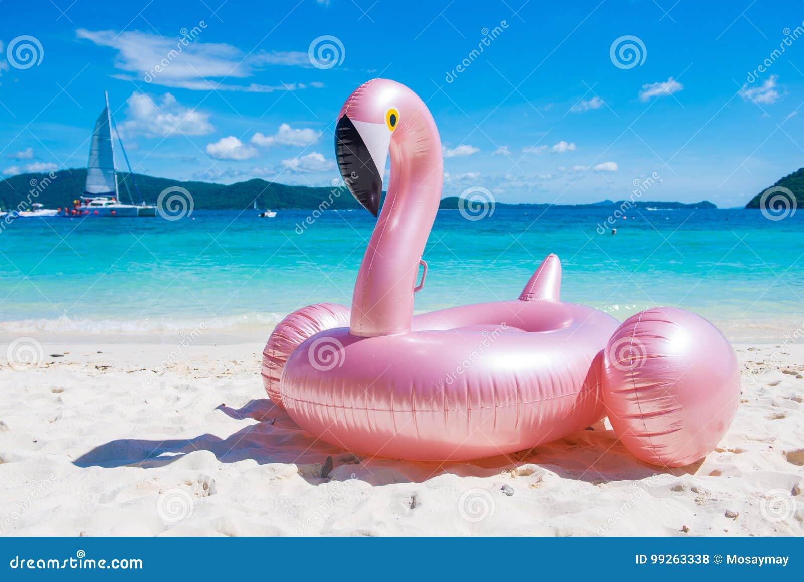 在热带的巨型可膨胀的桃红色火鸟水池浮游物玩具是