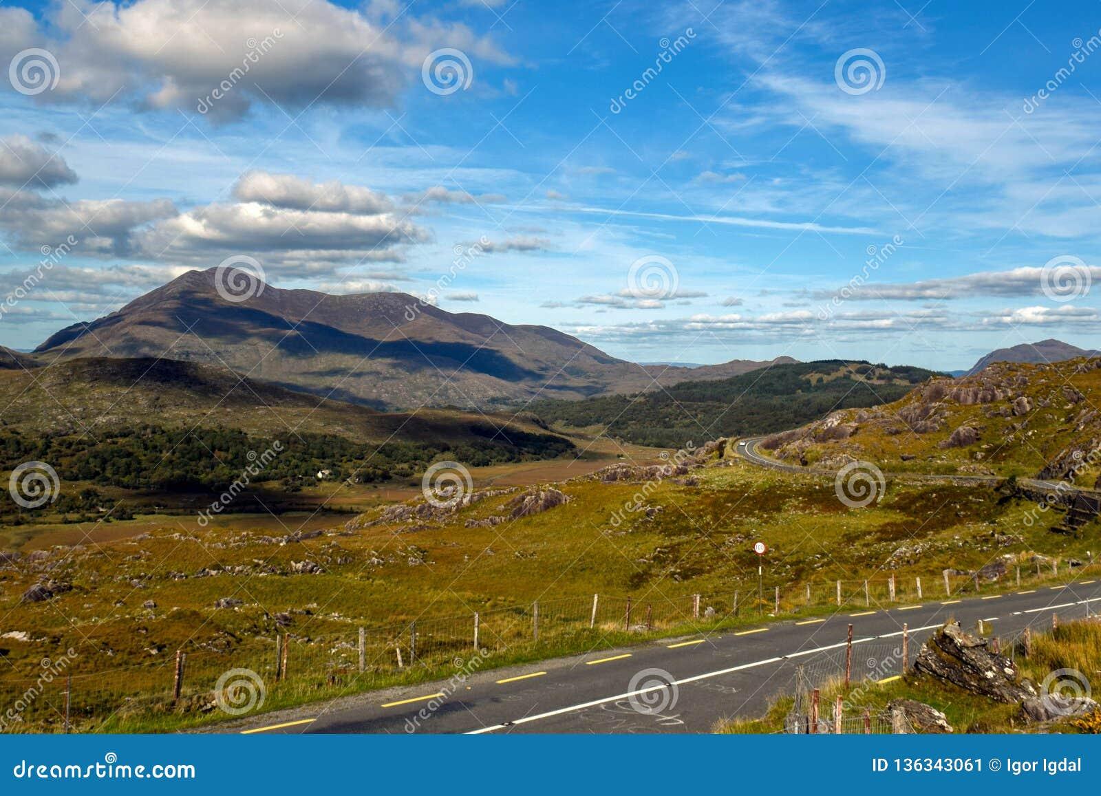 在爱尔兰的青山的中狭窄的柏油路绕 女人造成缝隙 凯利环形