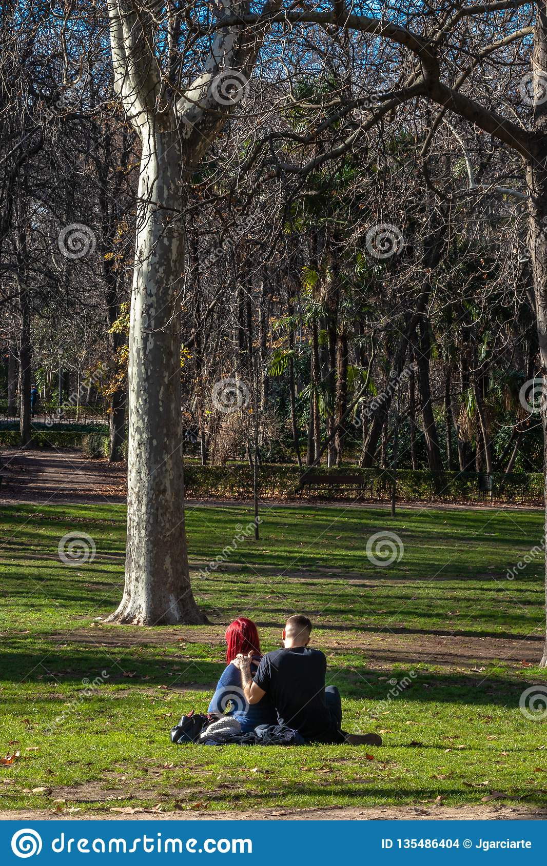 在爱的年轻夫妇在草在一个室外公园