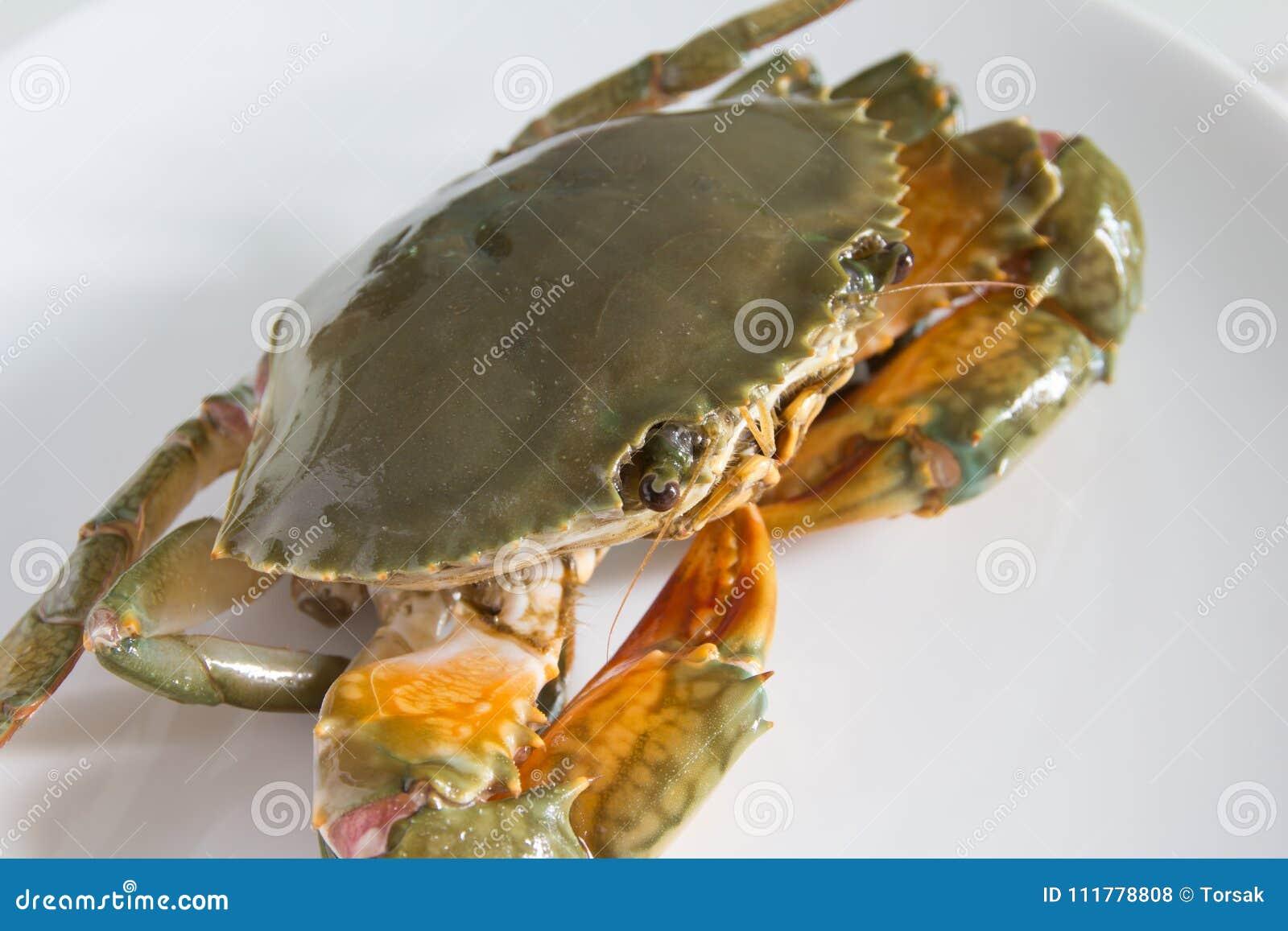在牌照的螃蟹