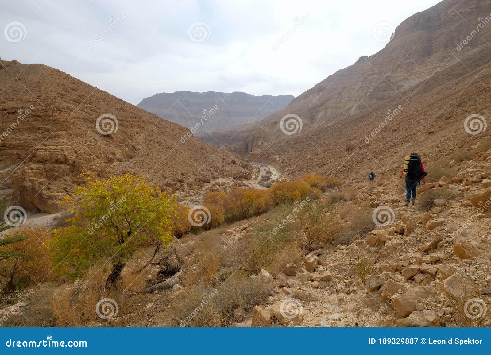 在犹太山的沙漠旱谷