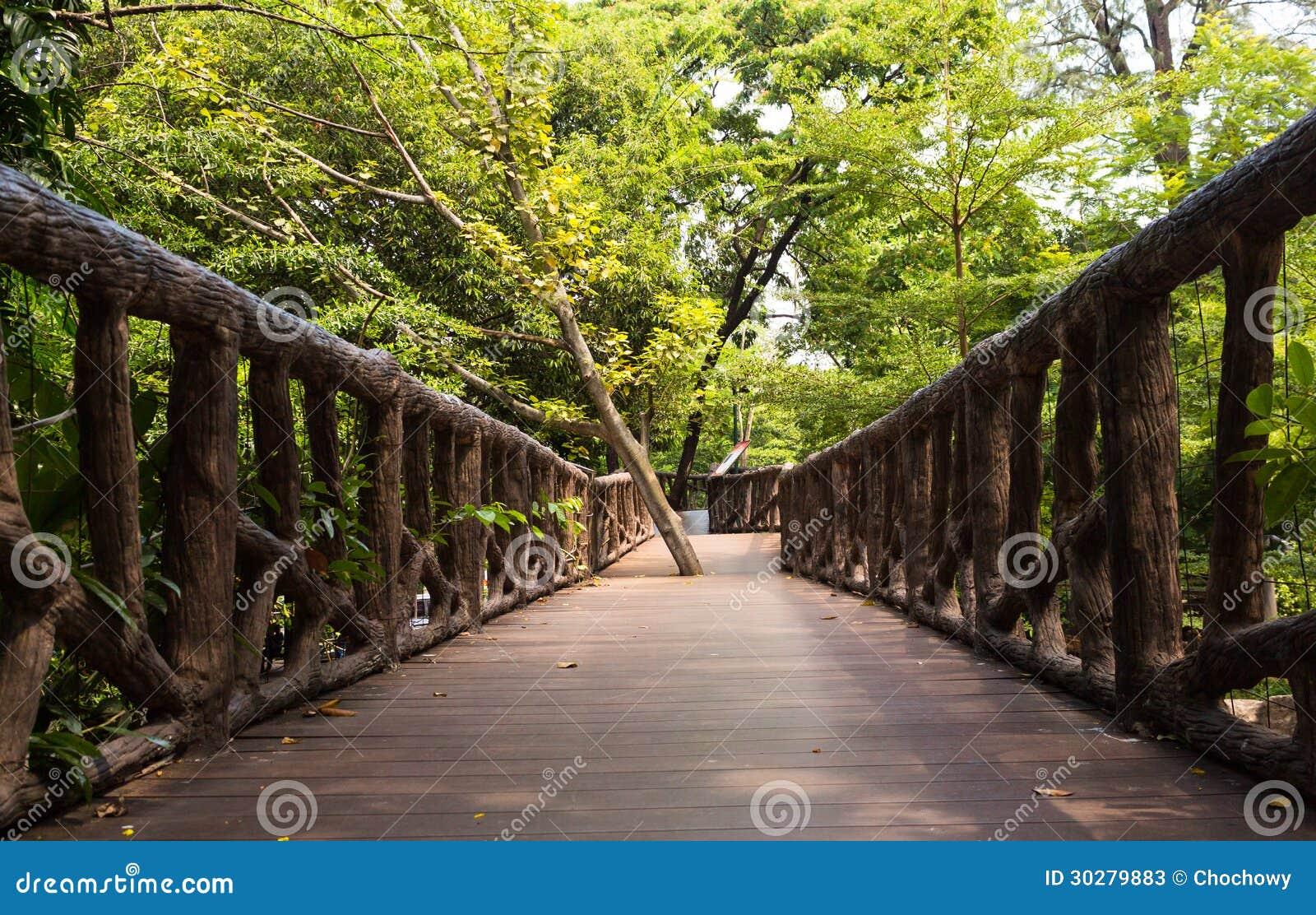 在狂放的森林中的木桥道路