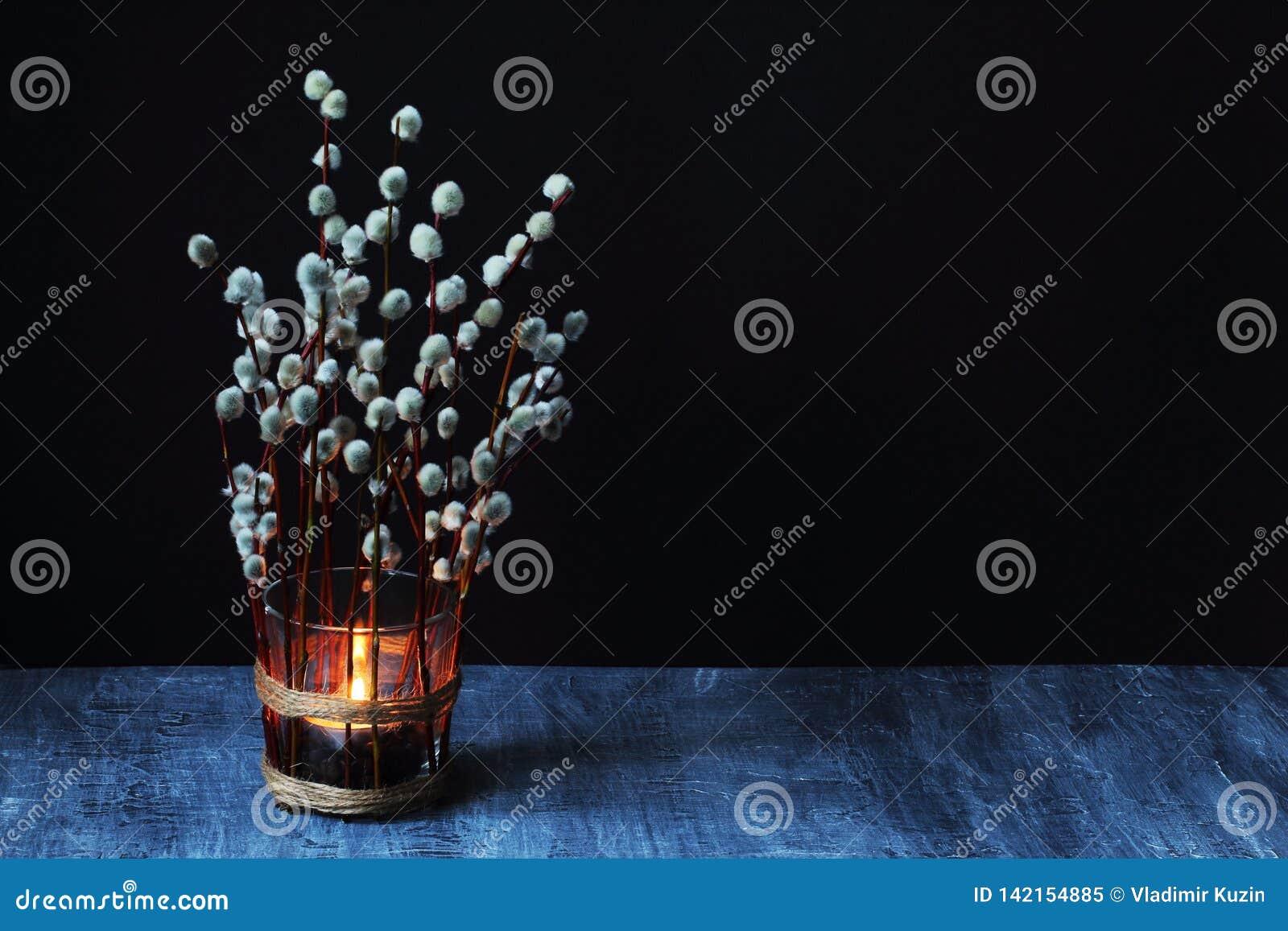 在用开花的杨柳分支装饰的玻璃烧杯的燃烧的蜡烛反对黑具体背景对黑墙壁