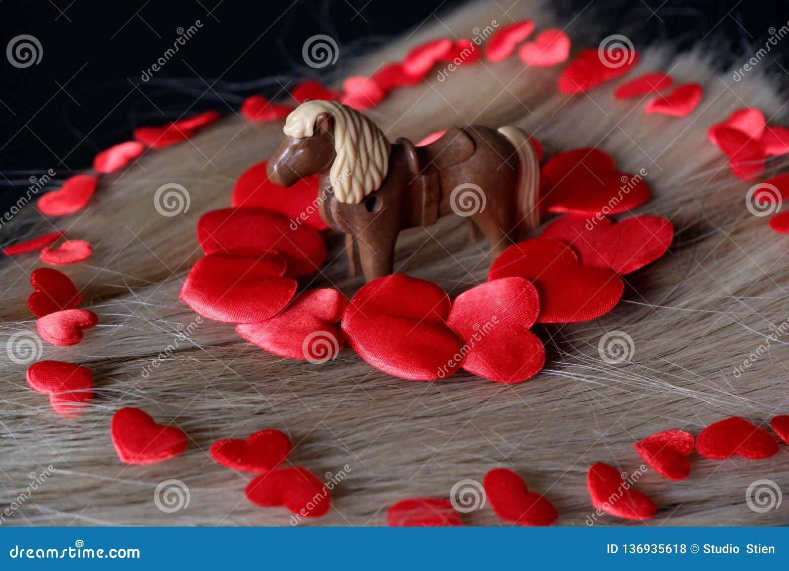 在白肤金发的马头发的红心围拢的马