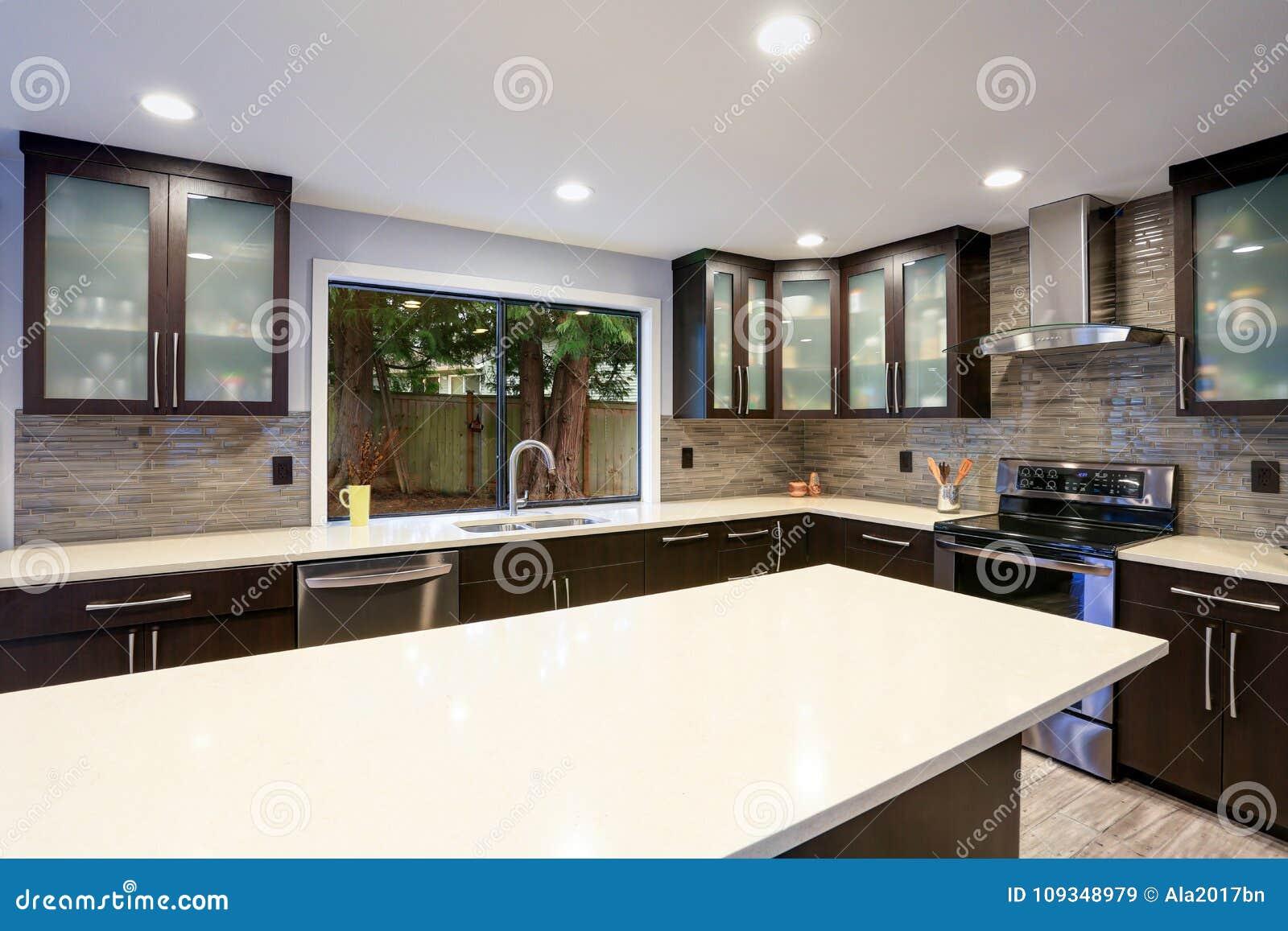 在白色和黑暗的口气的更新当代厨房室内部