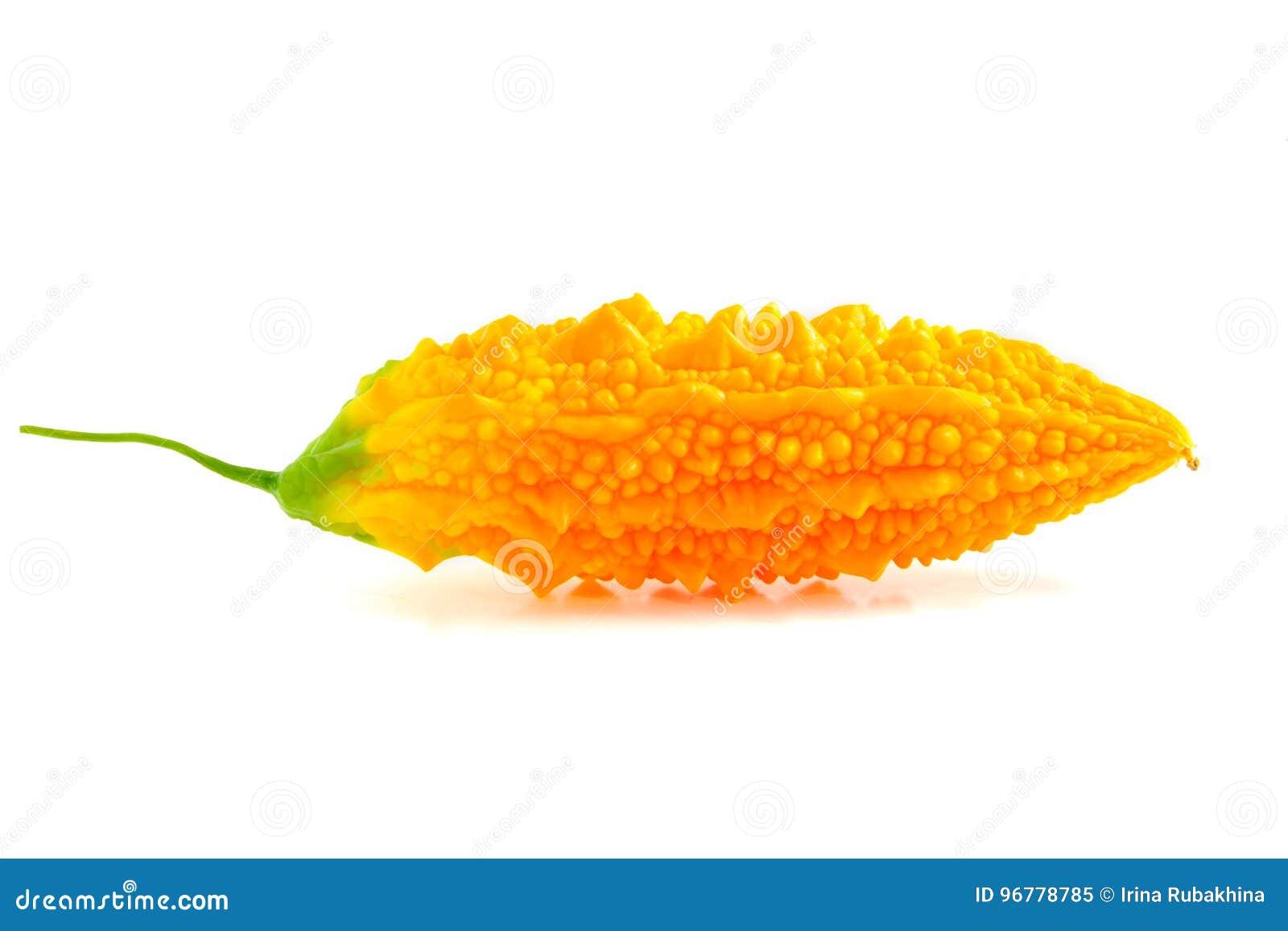 在白色或黄色苦瓜属隔绝的苦涩瓜