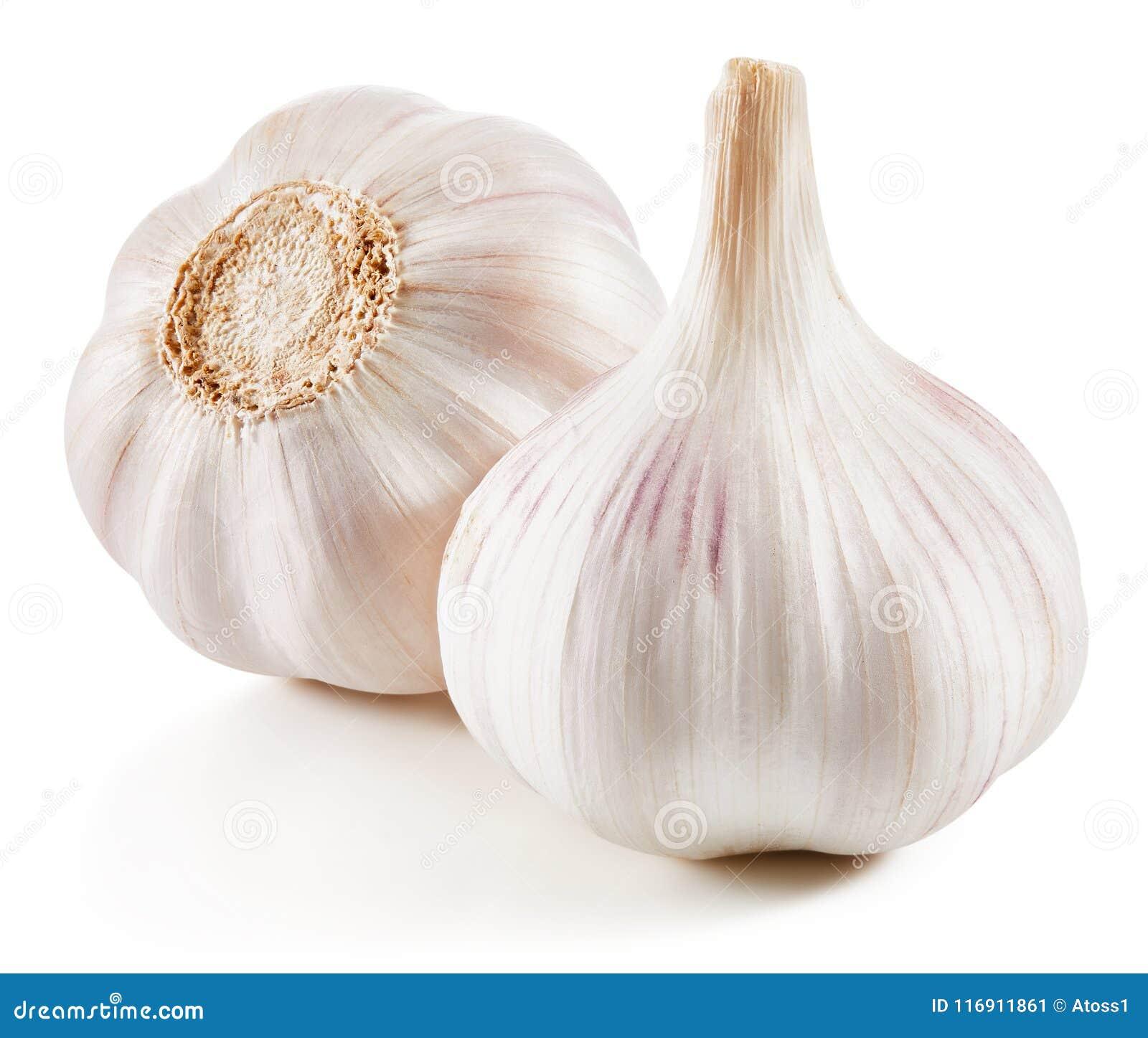 在白色查出的大蒜