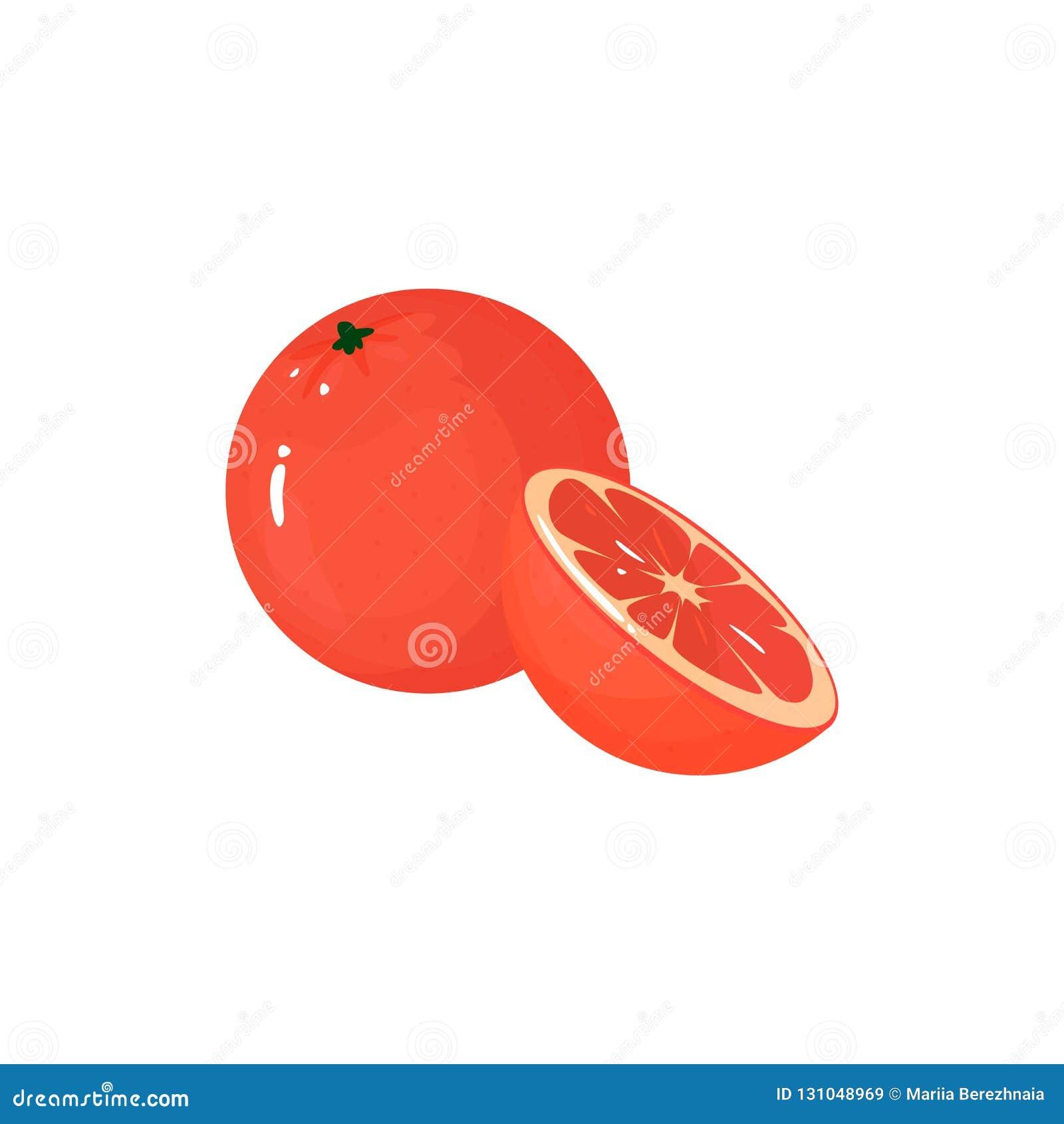 在白色的动画片新鲜的葡萄柚被隔绝的象