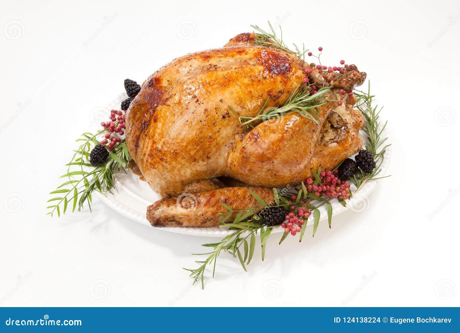 在白色的感恩火鸡