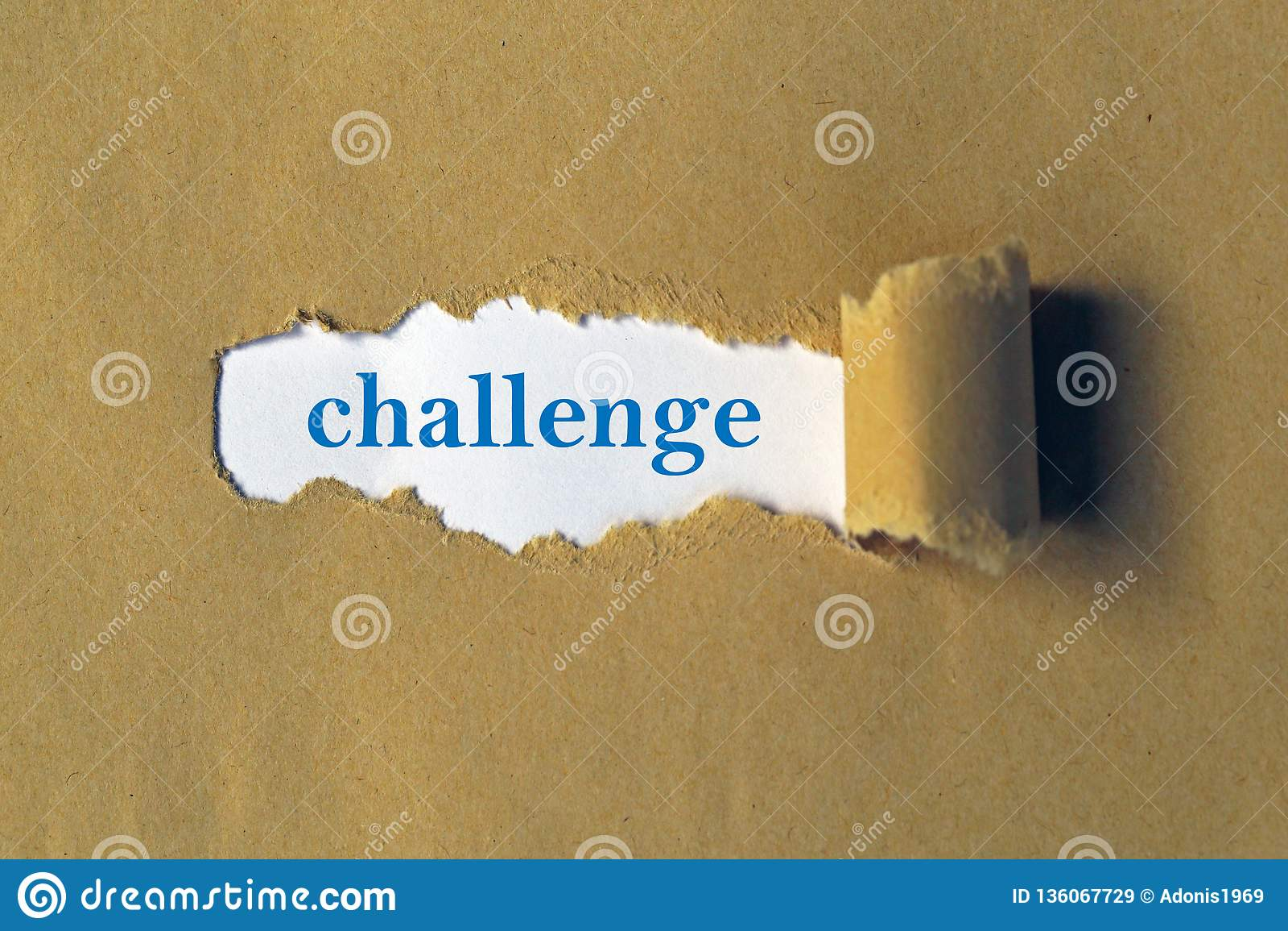 在白色的挑战