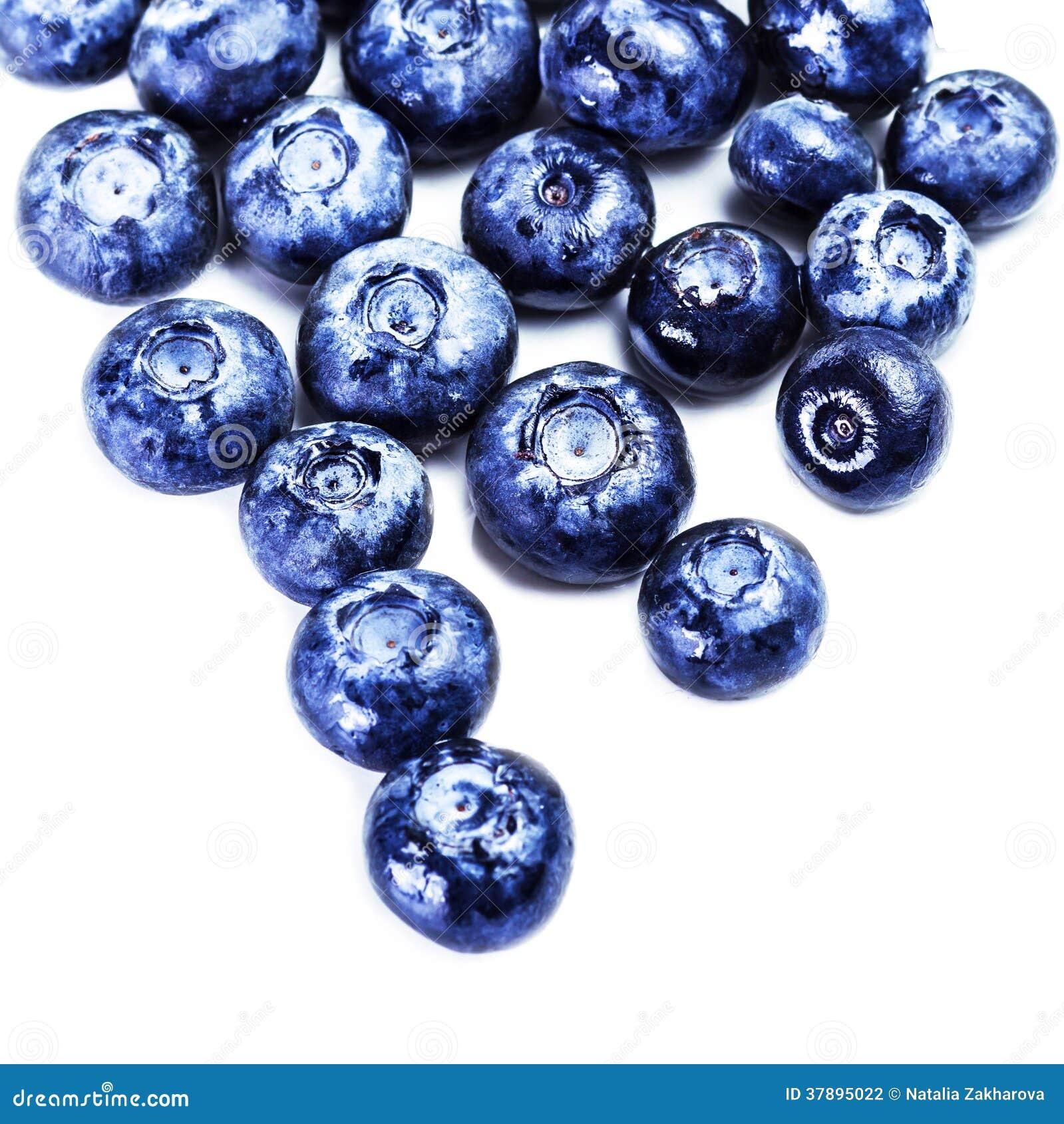 在白色背景关闭隔绝的蓝莓。小组fres
