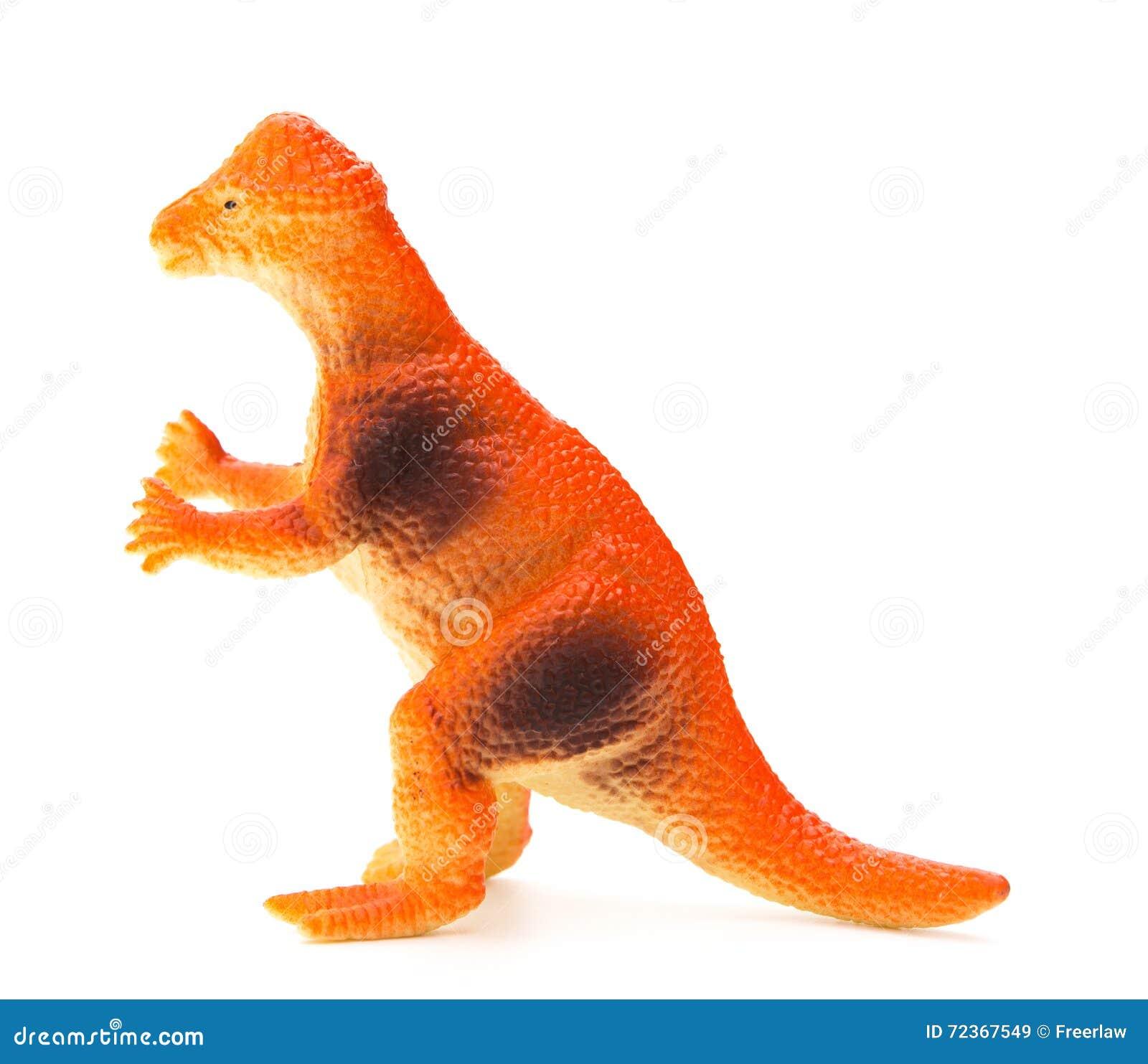 在白色背景的侧视图橙色pachycephalosaurus
