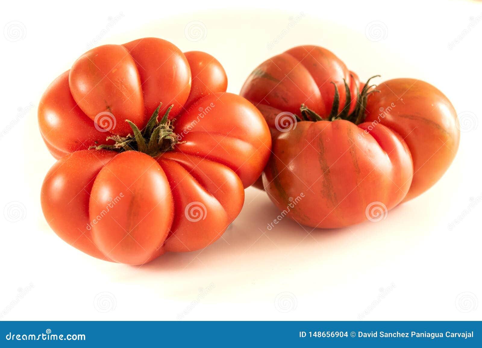 在白色背景的蕃茄