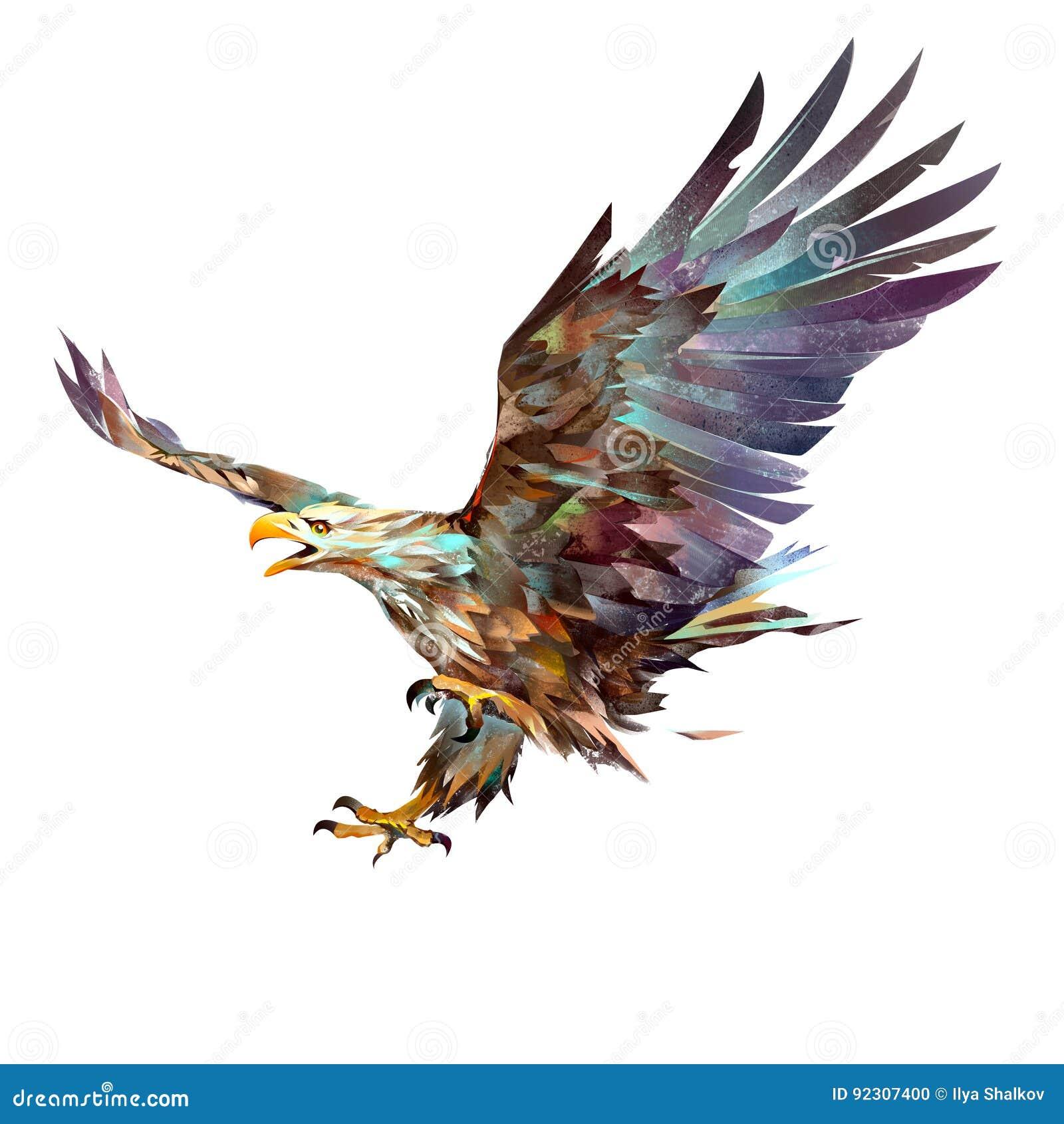 在白色背景的被绘的明亮的飞行老鹰
