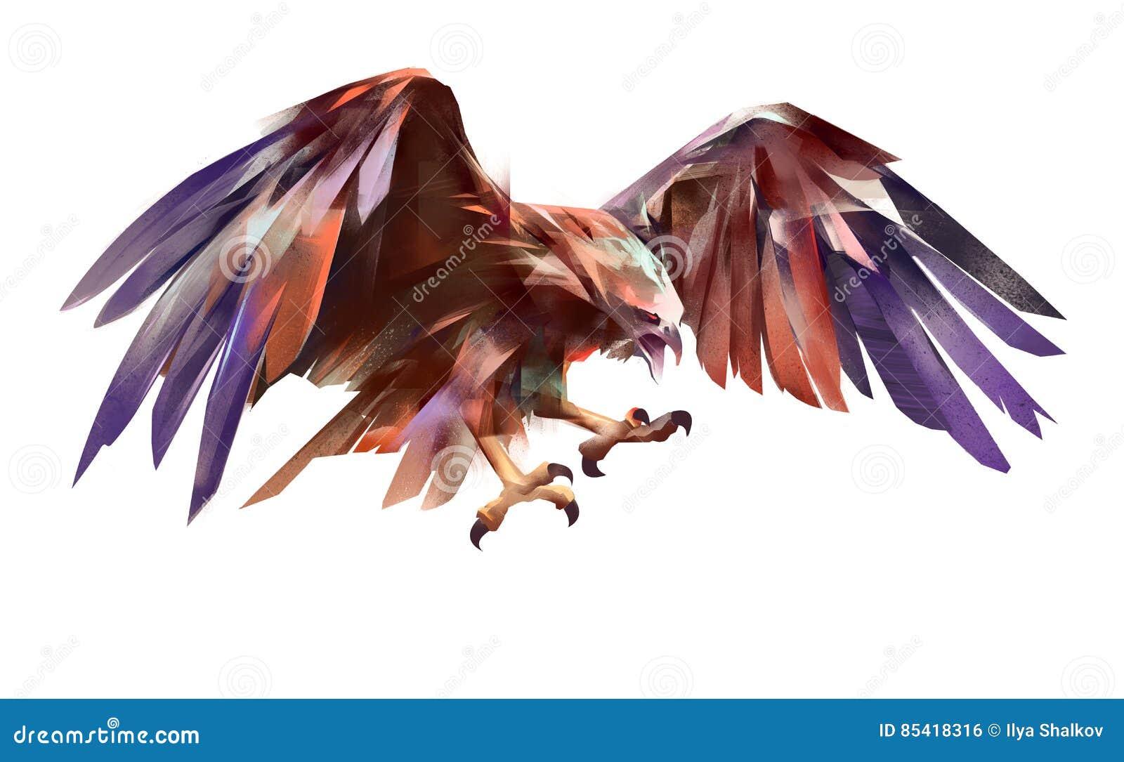 在白色背景的被绘的飞行的老鹰