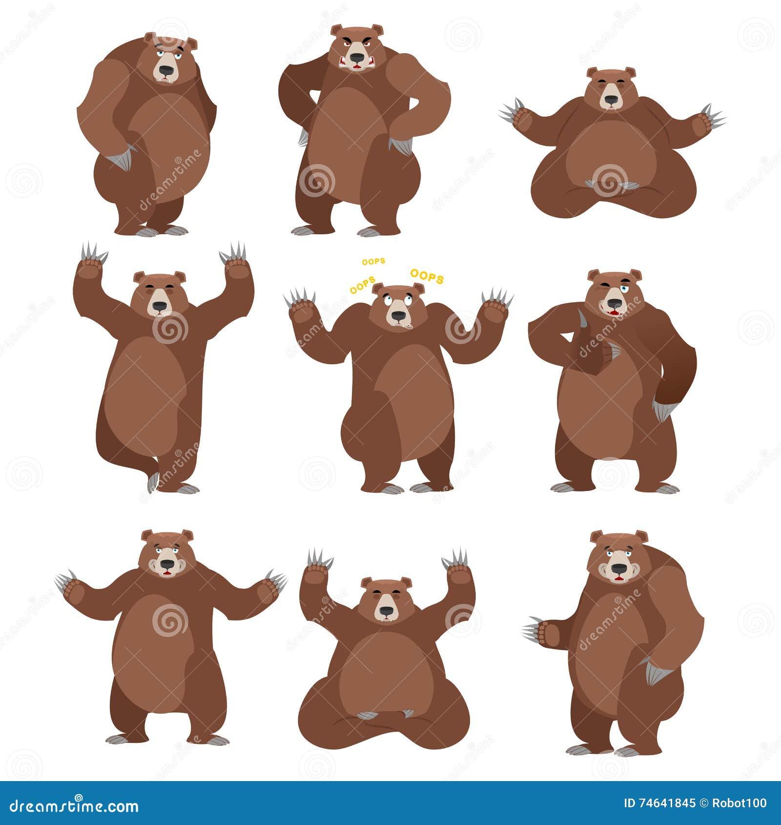 在白色背景设置的熊 北美灰熊各种各样的姿势 表示