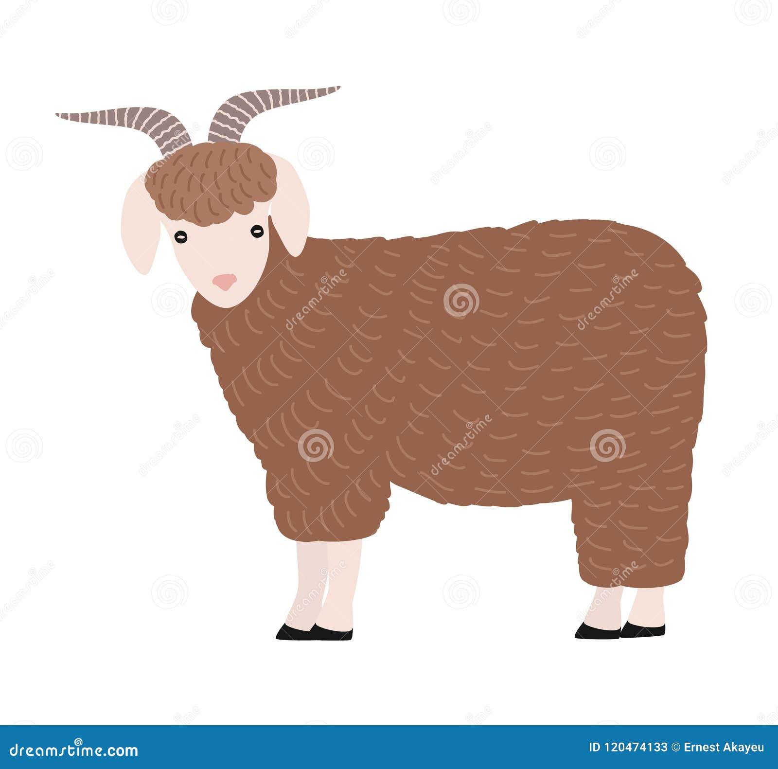 在白色背景隔绝的可爱的山羊 逗人喜爱的可爱的与垫铁的动画片家养的仓库广场动物,国家农场