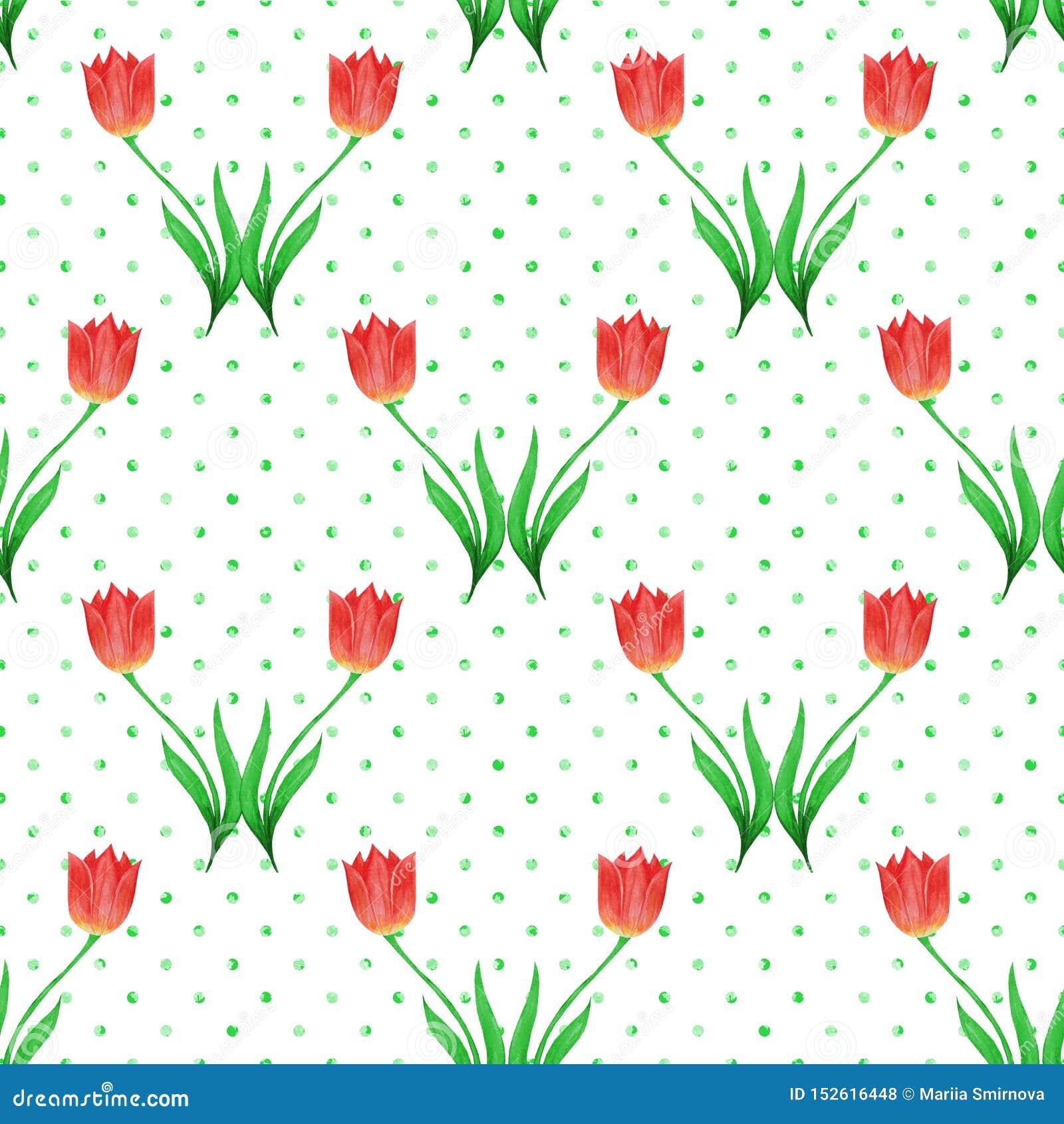 在白色背景隔绝的郁金香的简单的无缝的样式 绿色圆点