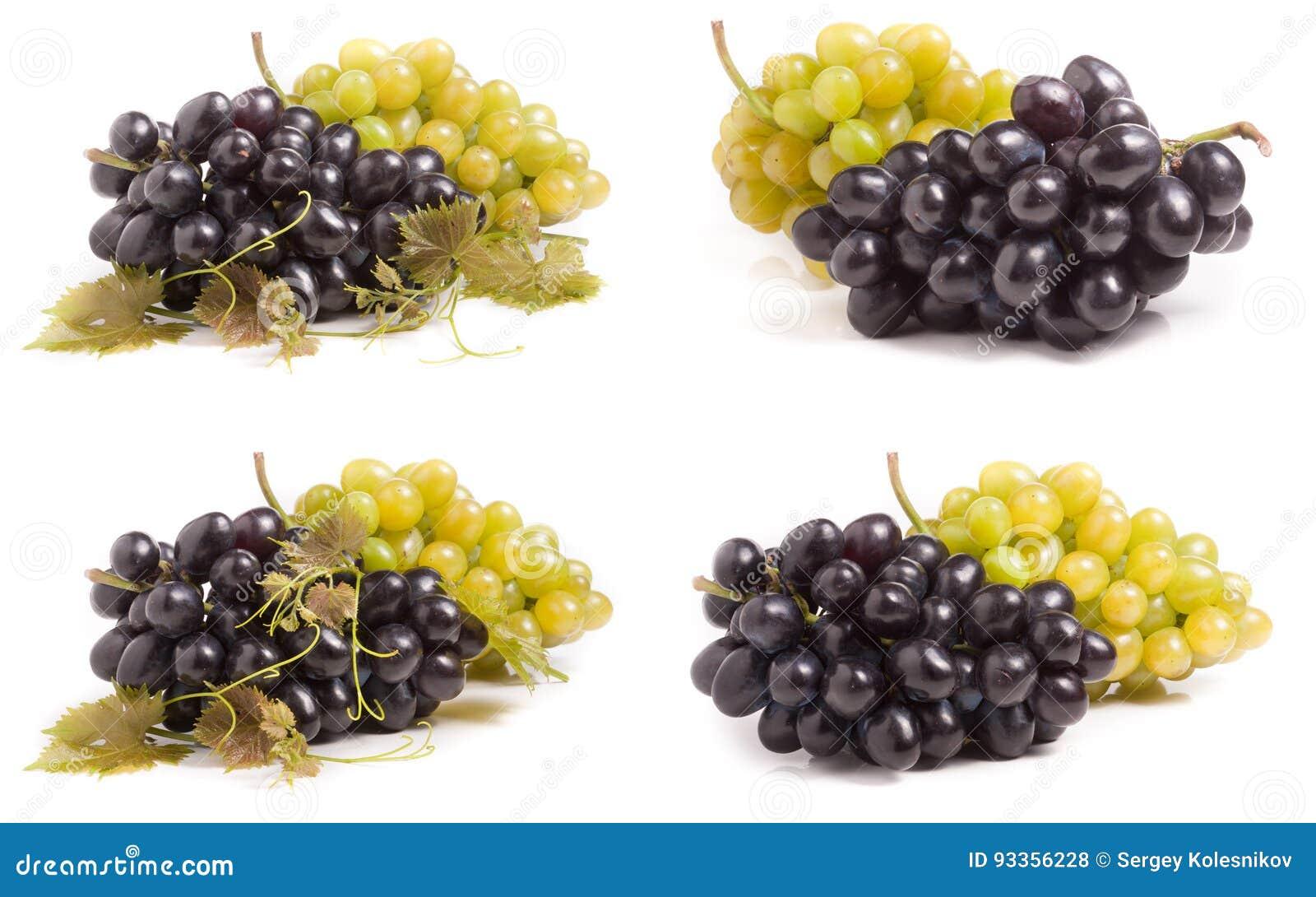 在白色背景隔绝的束绿色和蓝色葡萄 集合或汇集