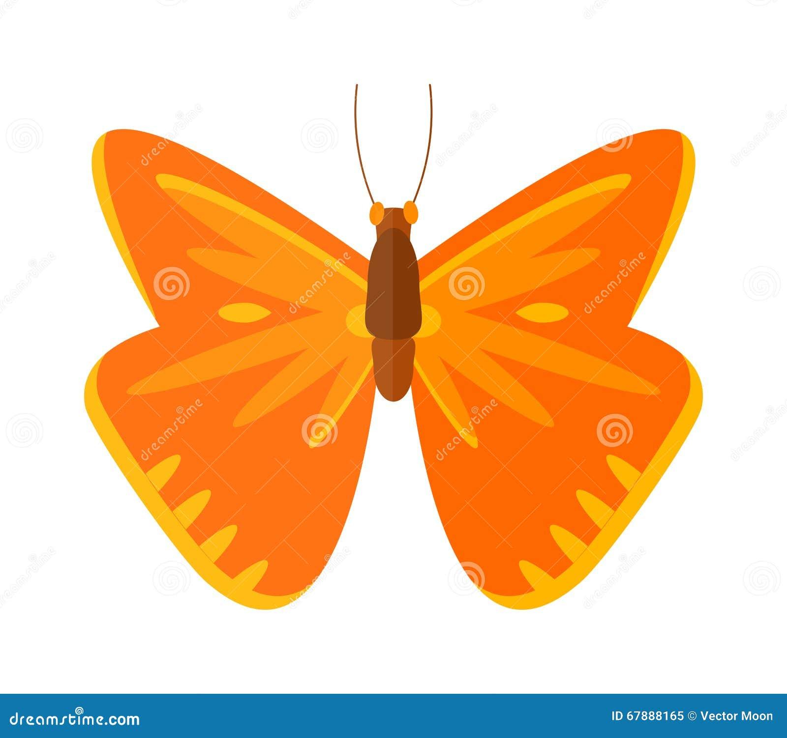 在白色背景隔绝的色的动画片纹白蝶传染媒介