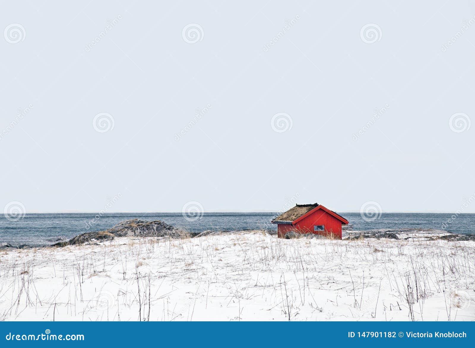 在的偏僻的小屋在norwey lofoten
