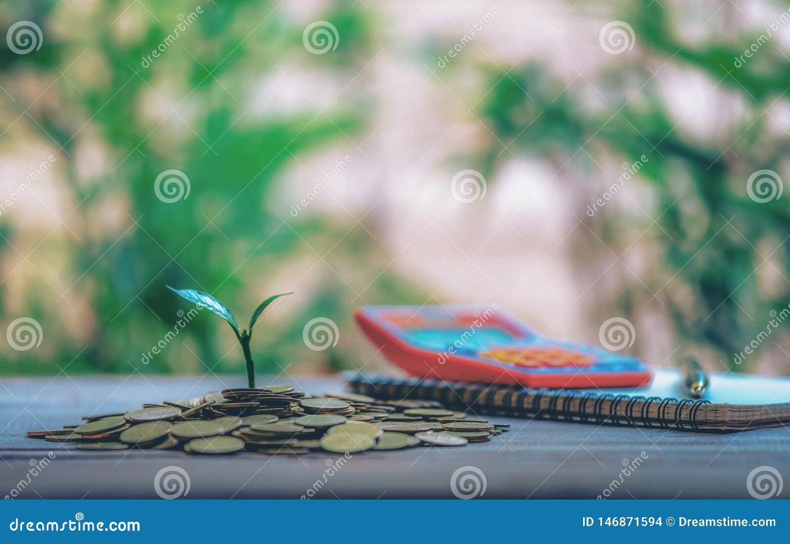 在硬币安置的议院 笔记本和笔准备硬币计划的储款金钱买物产梯子的一个家庭概念,