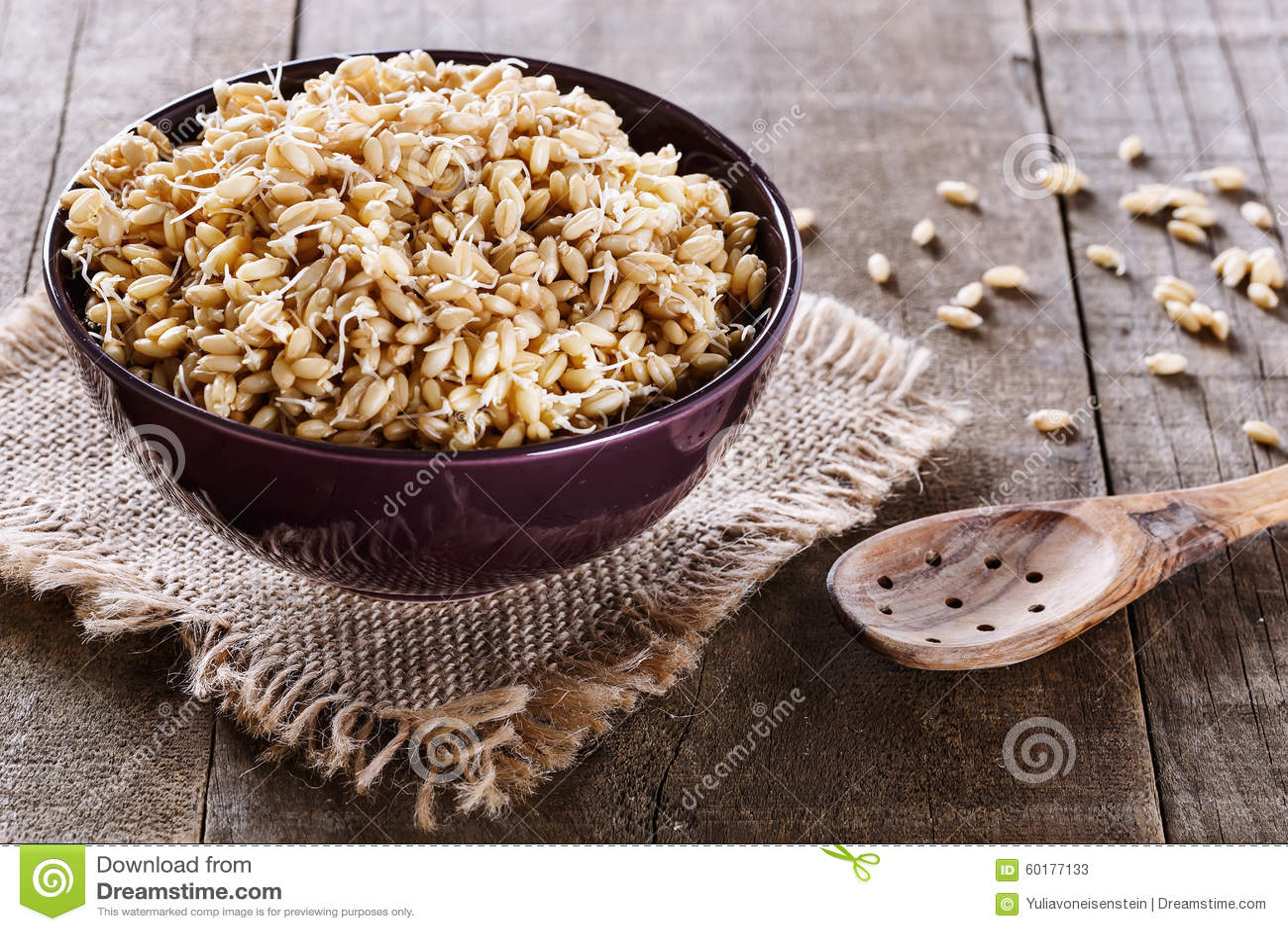 在碗的发芽的麦芽