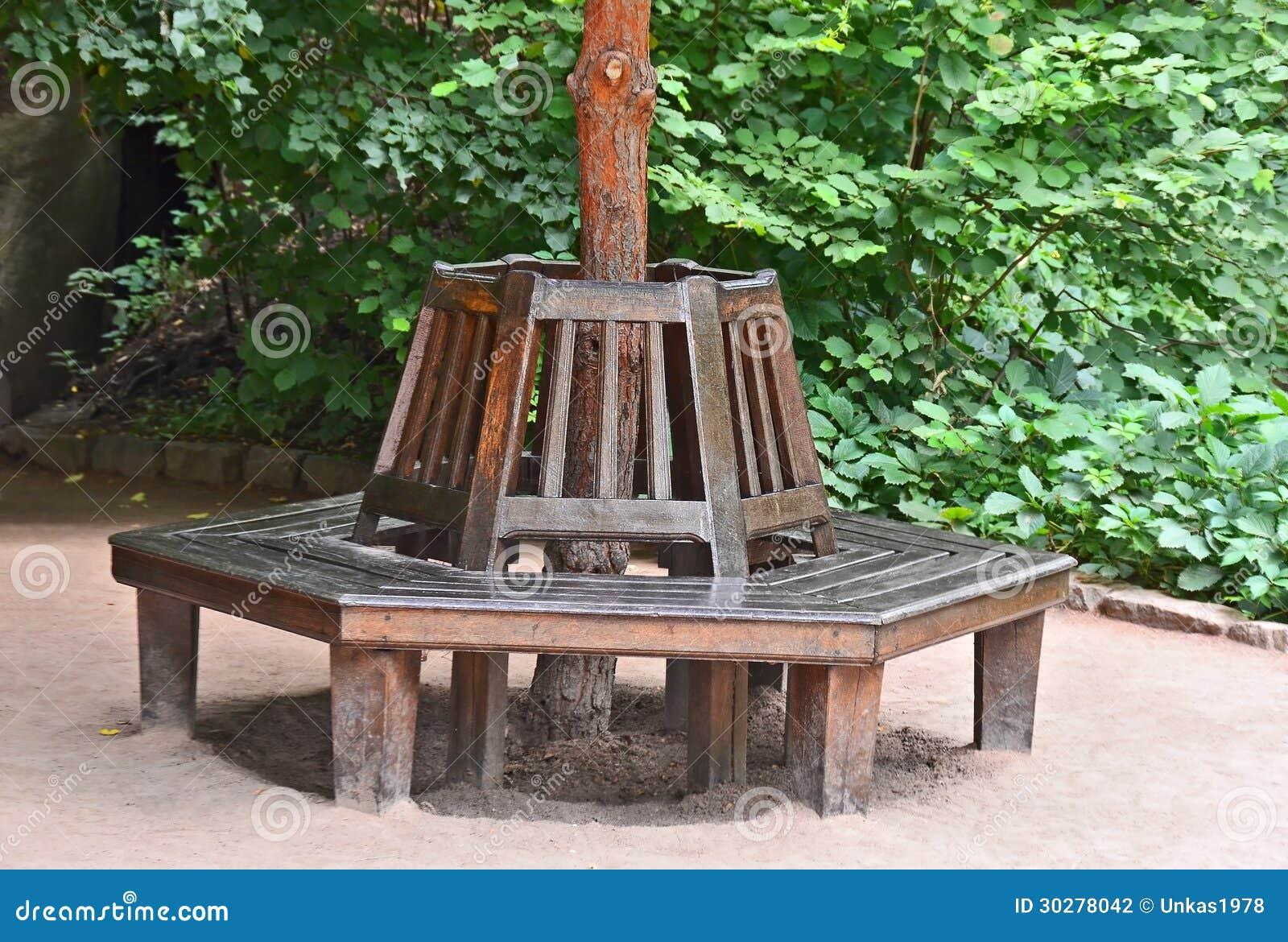 长凳在秋天公园