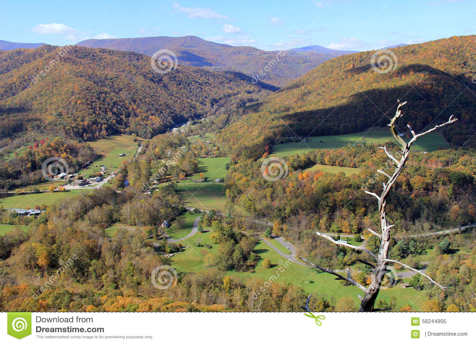 在秋天的塞内卡岩石-阿巴拉契亚山脉-西维吉尼亚,美国