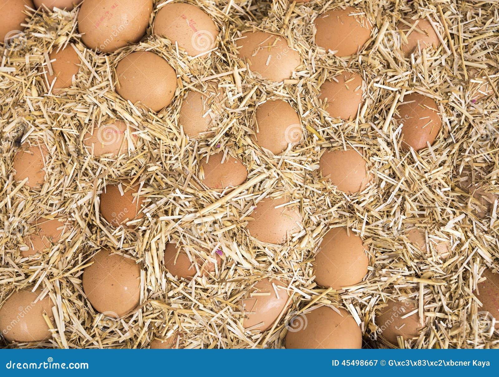 在秸杆的鸡蛋