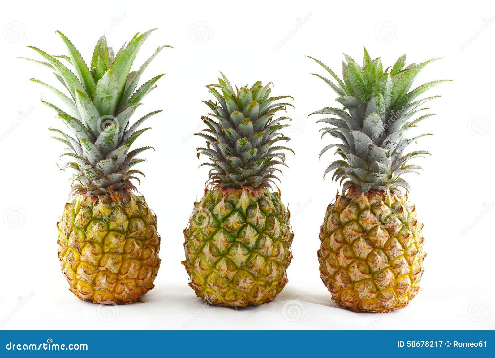 Download 在空白背景的菠萝 库存图片. 图片 包括有 背包, 菠萝, 水多, 点心, 食物, 关闭, 维生素, 自然 - 50678217