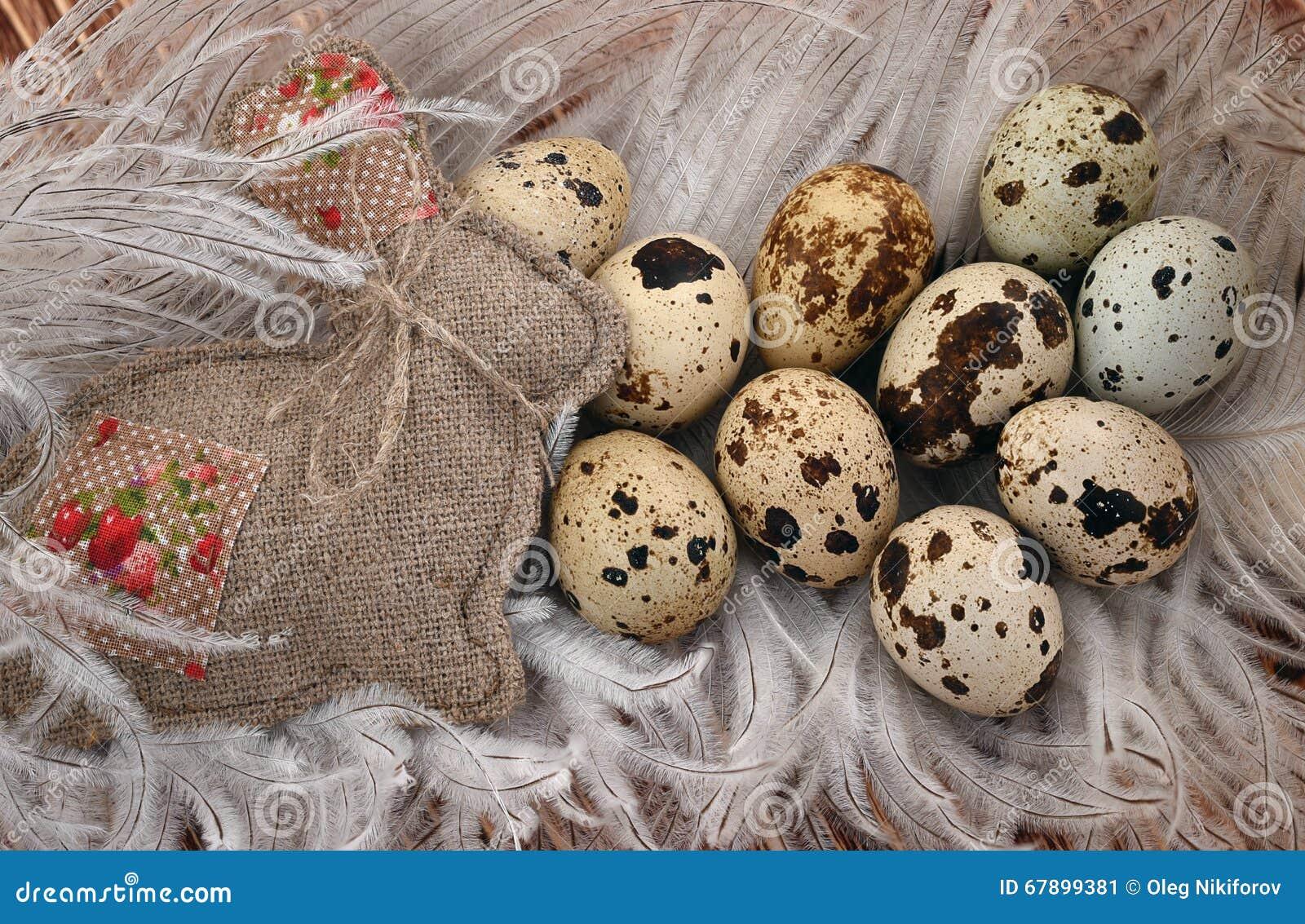 在笔的鸡蛋